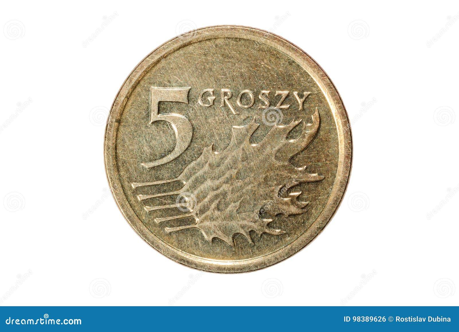 Pięć groszy polerujący złoty Waluta Polska Makro- fotografia moneta Polska przedstawia połysk groszy monetę