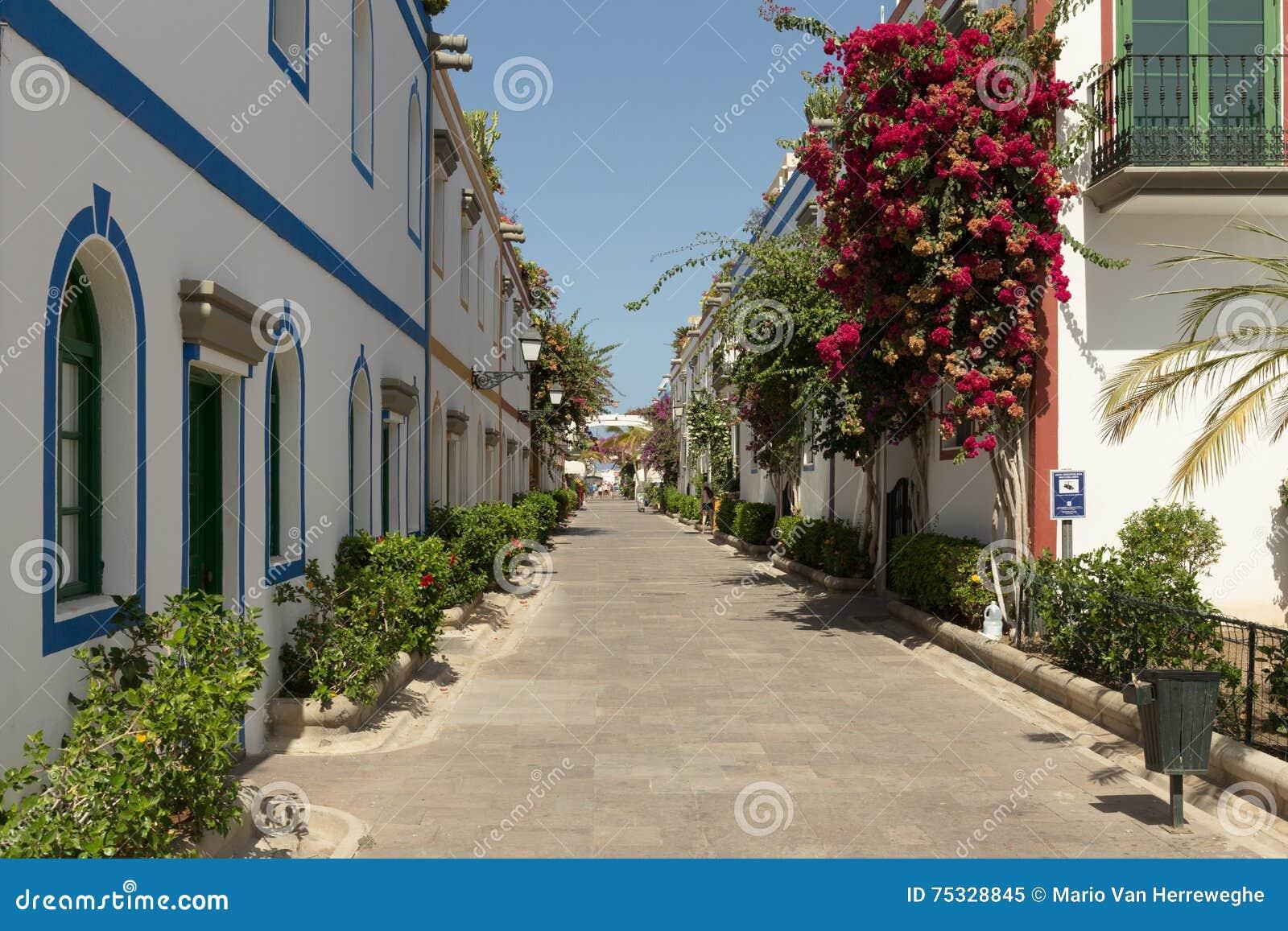 Piękna aleja Garn Canaria