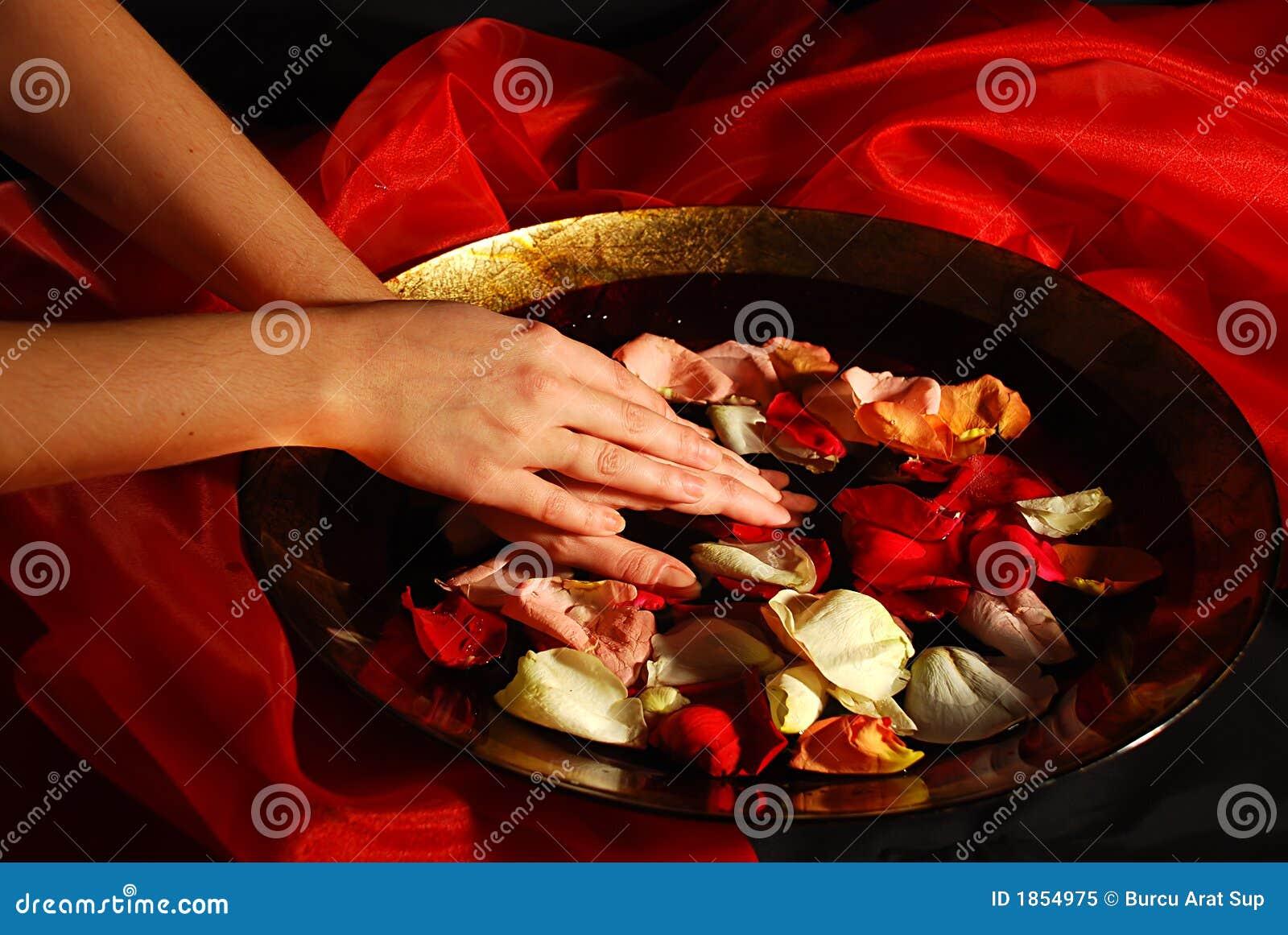 Piękna dłoń