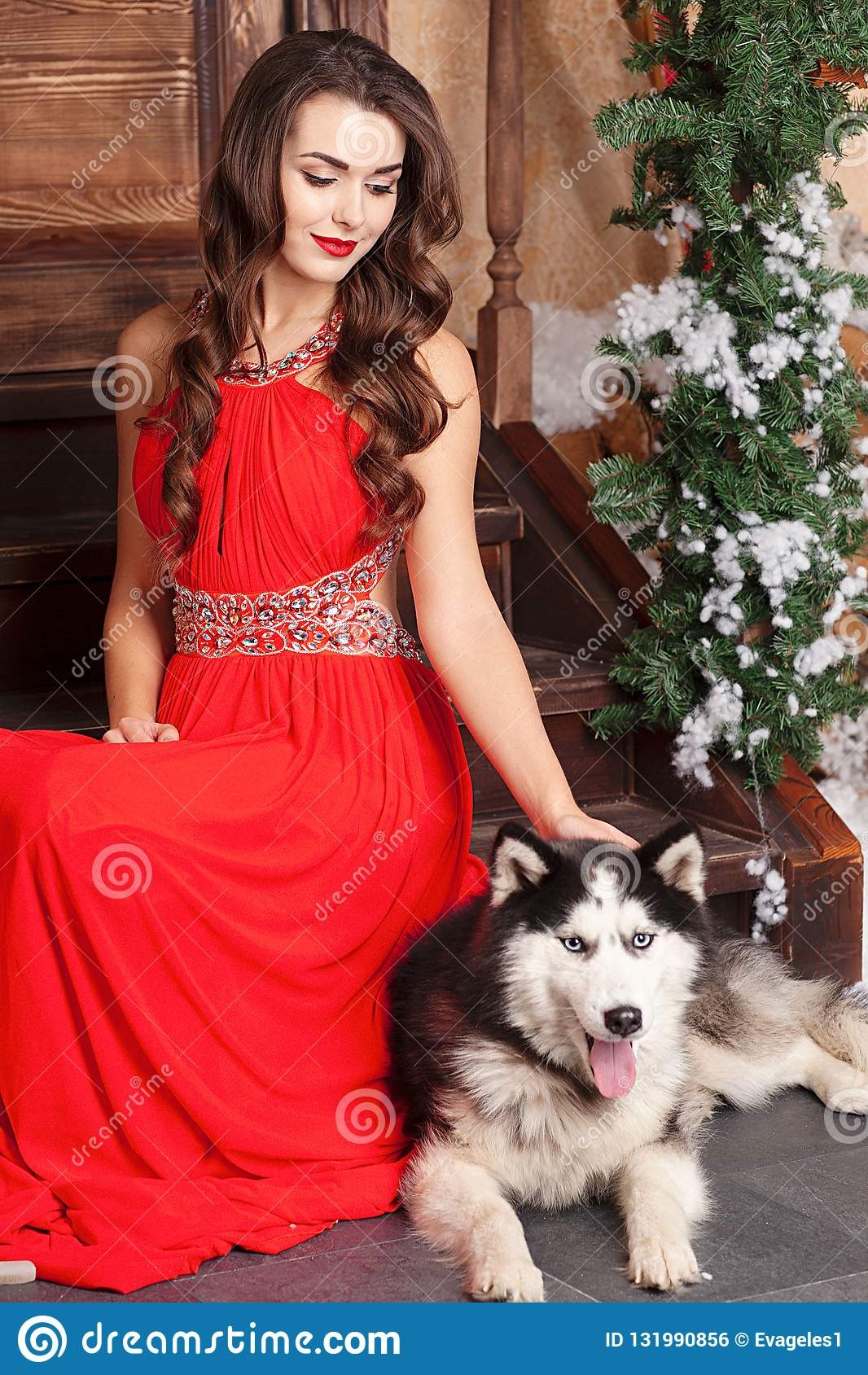 Piękna kobieta w czerwonym wieczór sukni obsiadaniu na krokach z jej psem, husky na tle boże narodzenia dekorowali pokój