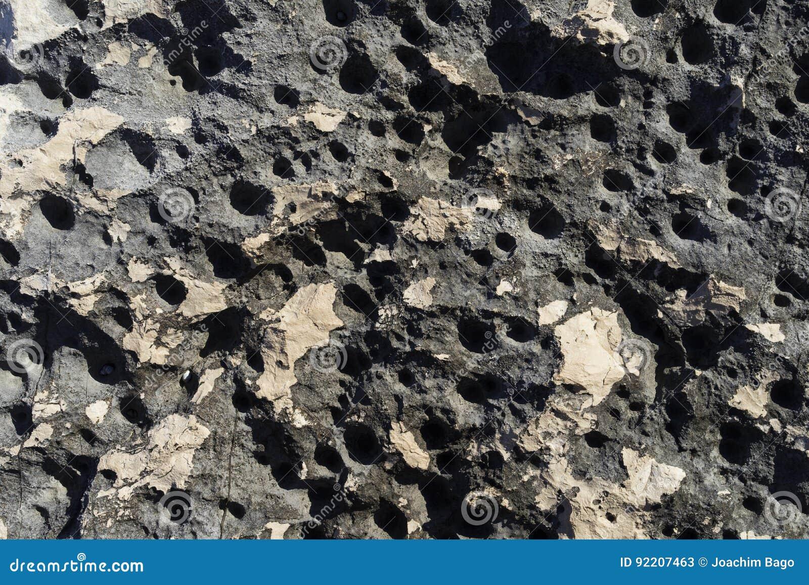 Piękna makro- fotografia tekstury, wzory i szczegóły od, skały, kamienia i rafy wokoło Adriatyckiego morza,
