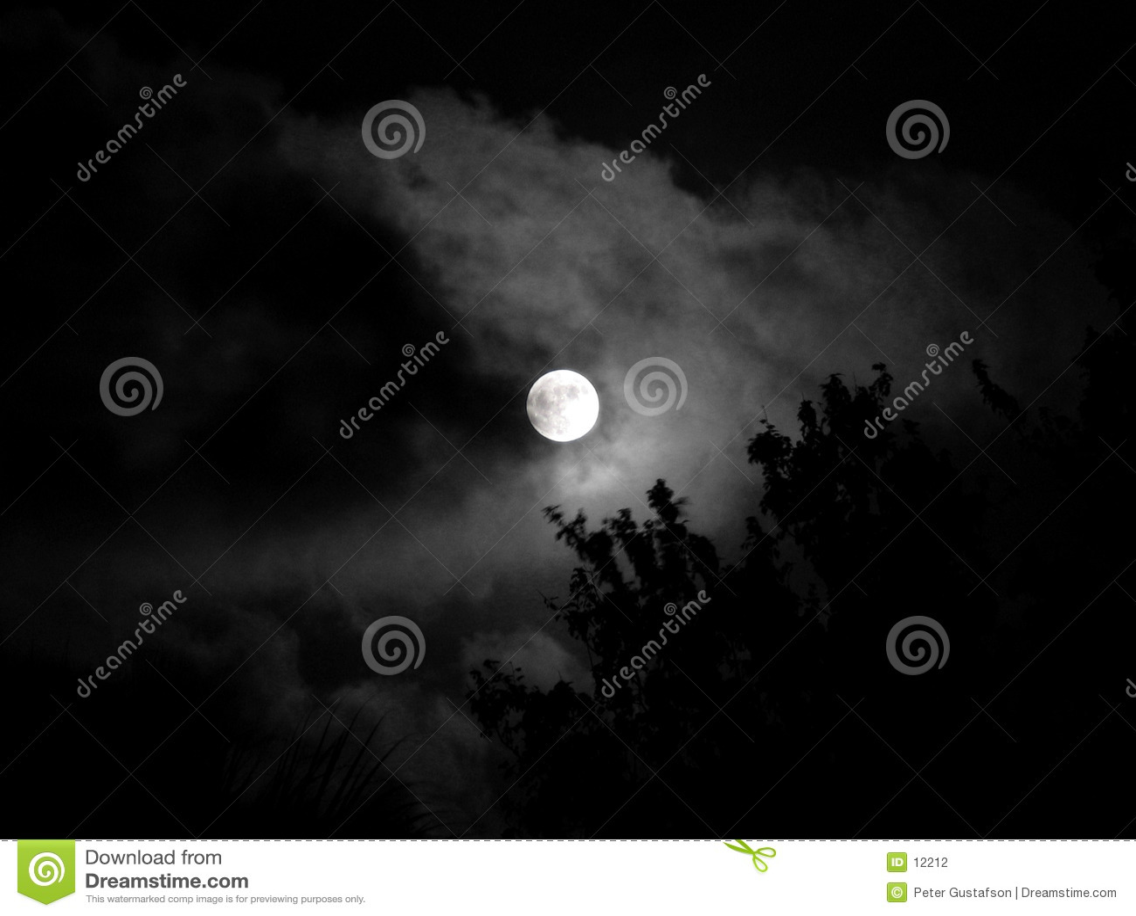 Piękna noc na księżyc