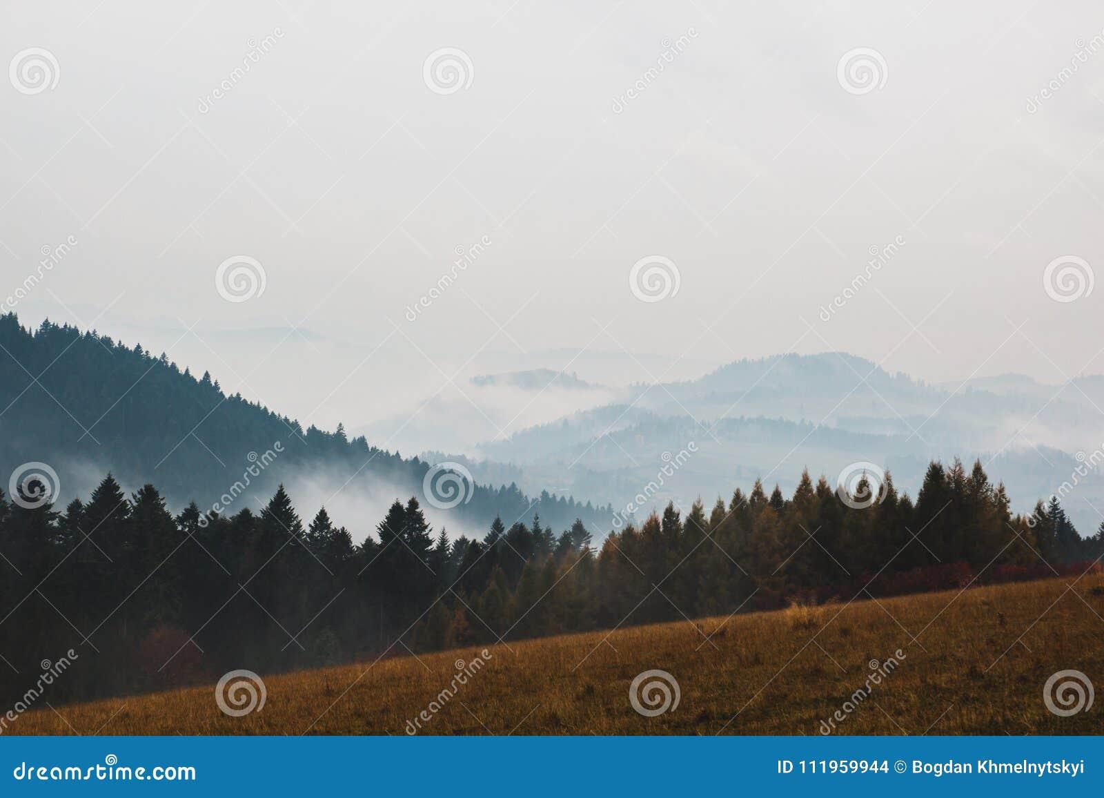 Piękna panorama góry zakrywać z lasami przeciw szaremu niebu
