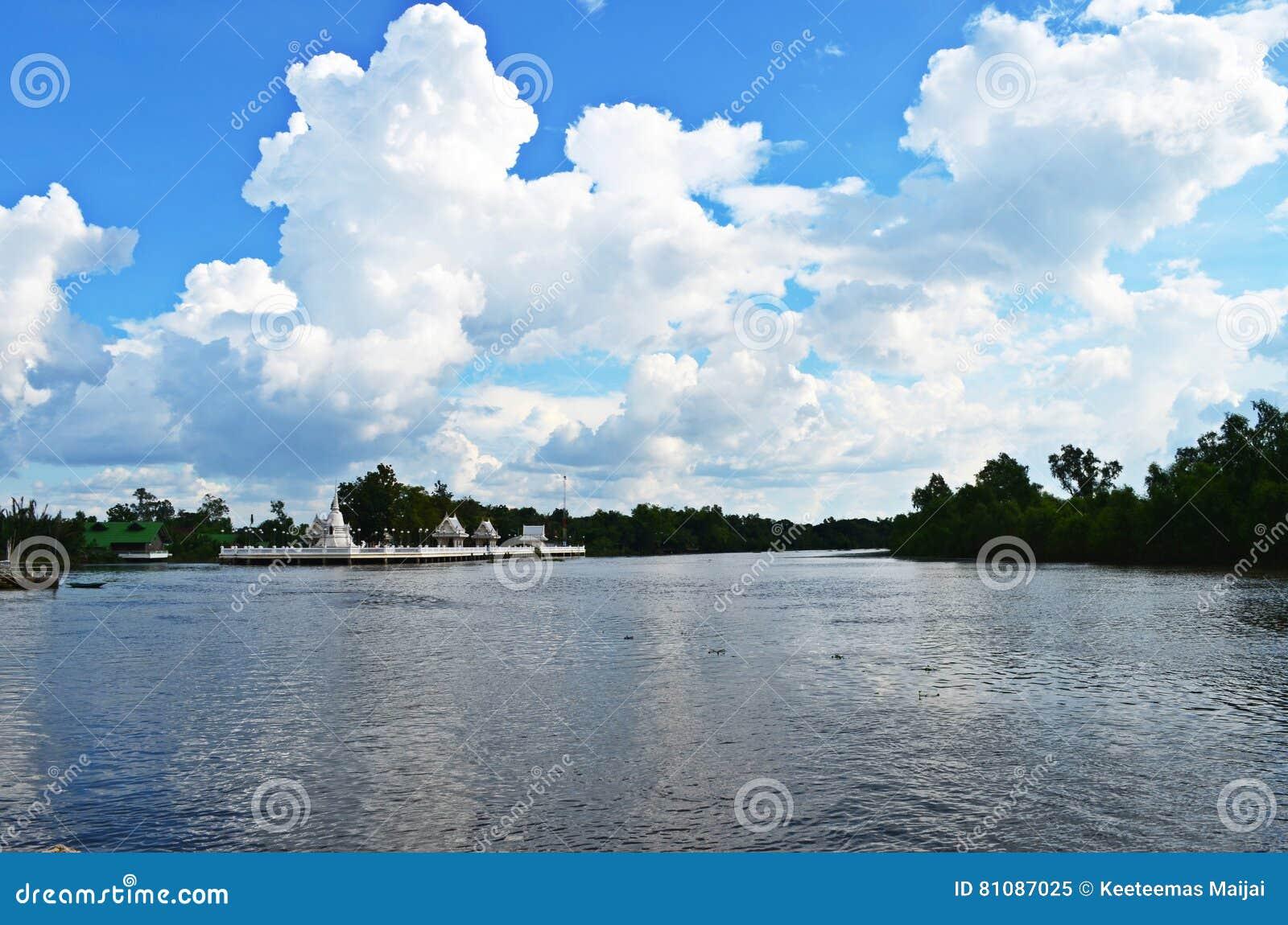 Piękna rzeka krajobrazu nieba lato