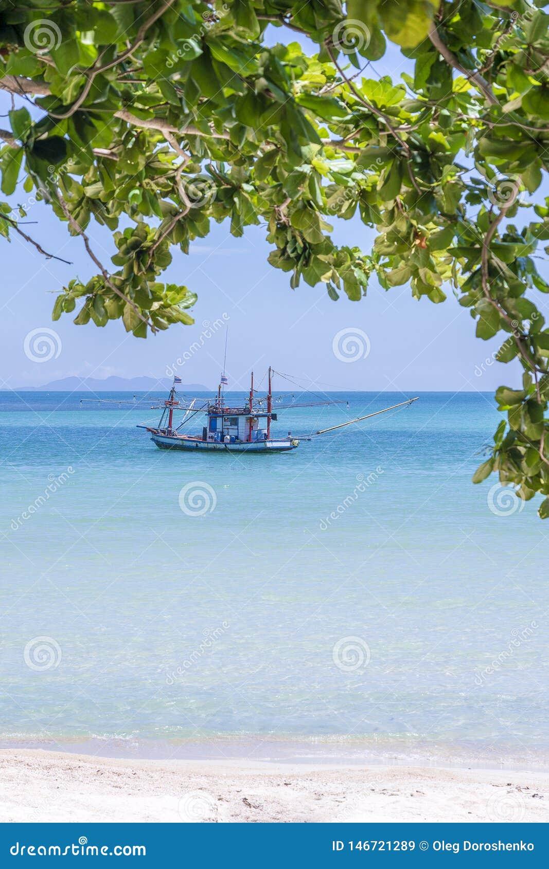 Piękna zatoka z rybak łodzią na niebieskiego nieba tle Tropikalna piasek plaża, woda morska na wyspy Koh Phangan i,