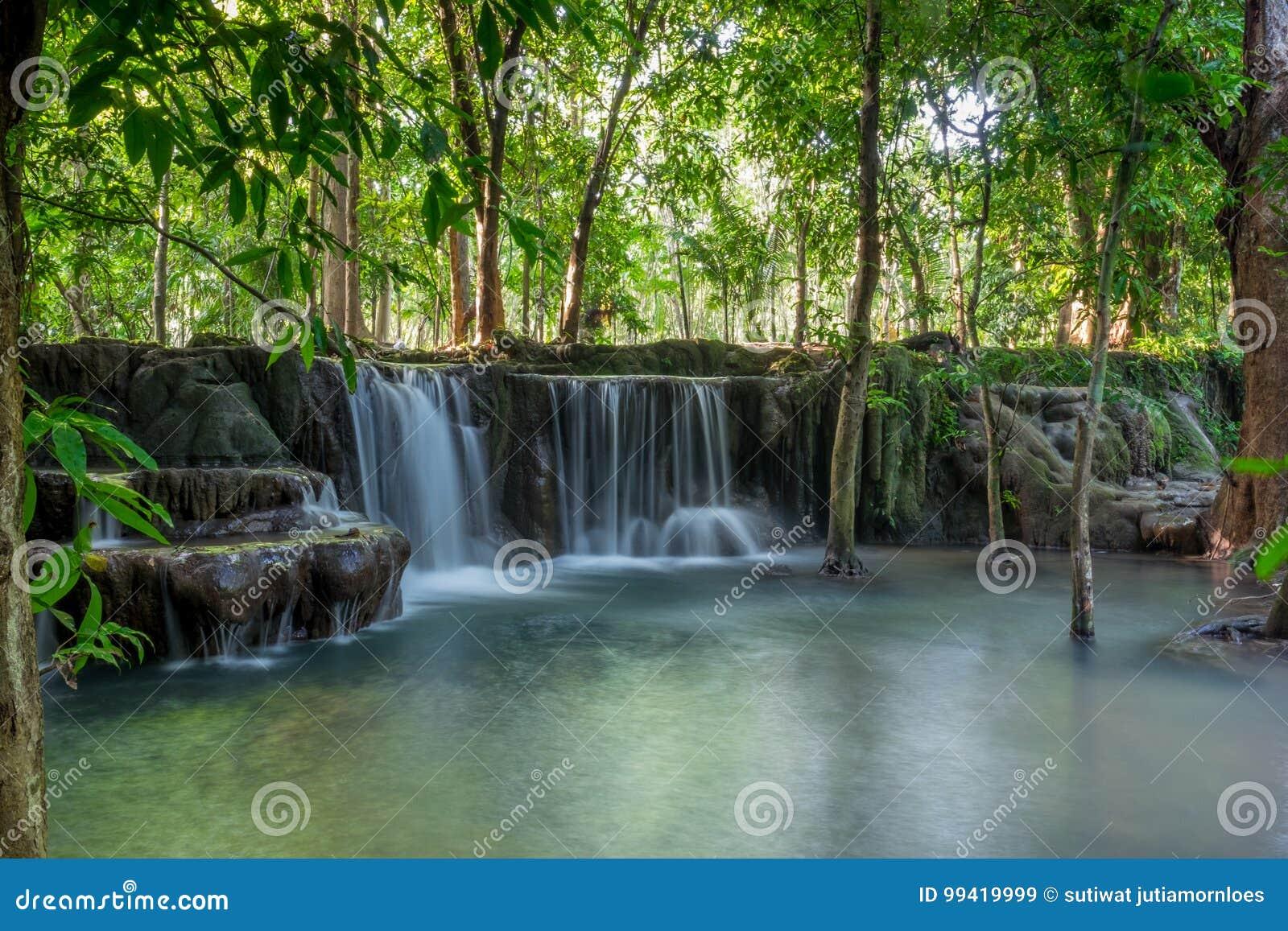 Piękne małe siklawy chować w tropikalnej dżungli Tajlandia