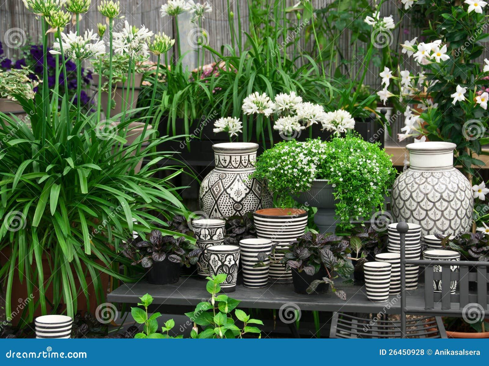 Piękne rośliny i ceramika w kwiatu sklepie