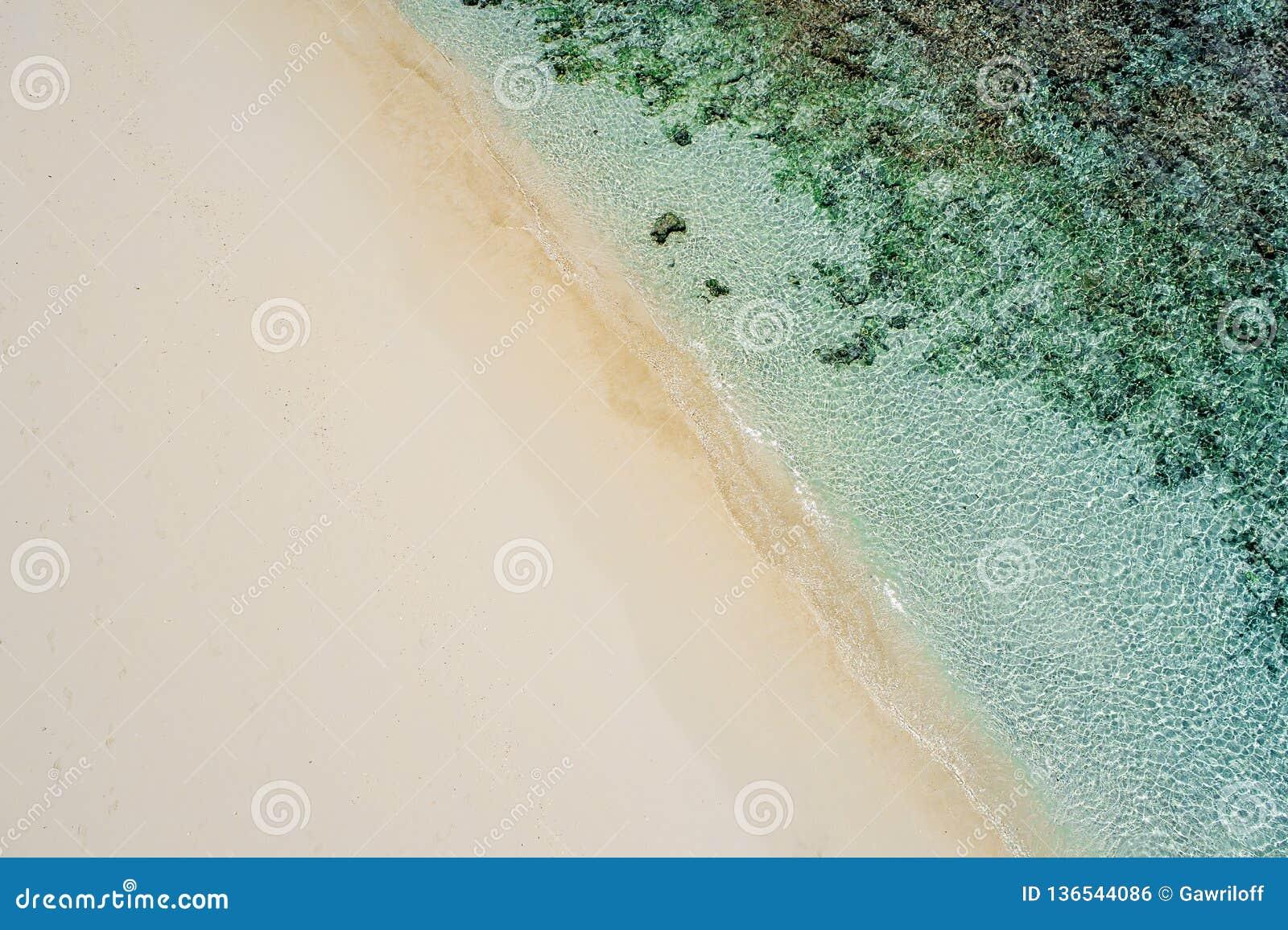 Pięknego tropikalnego bielu pusta plaża i morze machamy widziimy od above Seychelles plaży widok z lotu ptaka