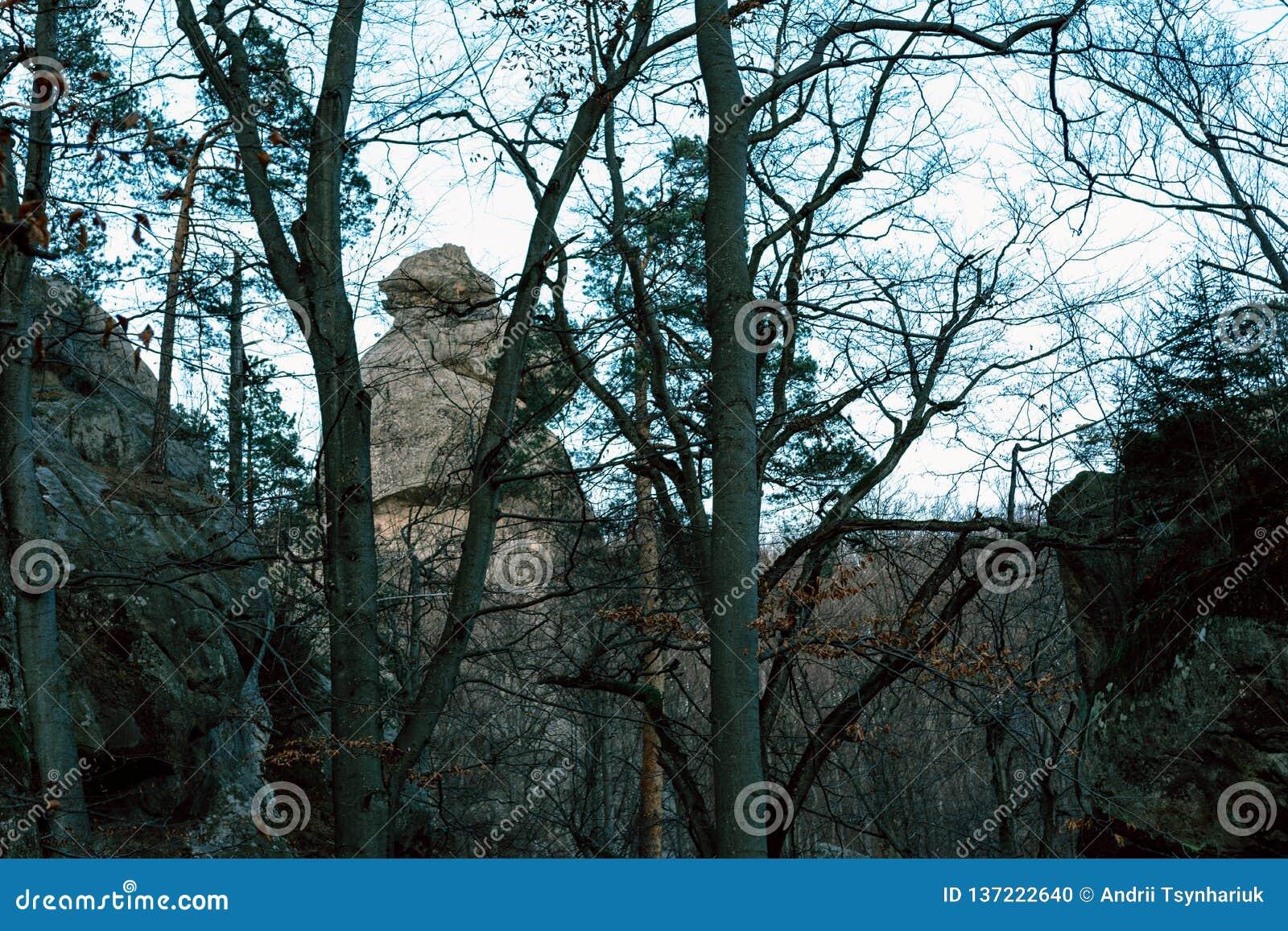 Piękni krajobrazy Dovbush Ukraina w jesieni