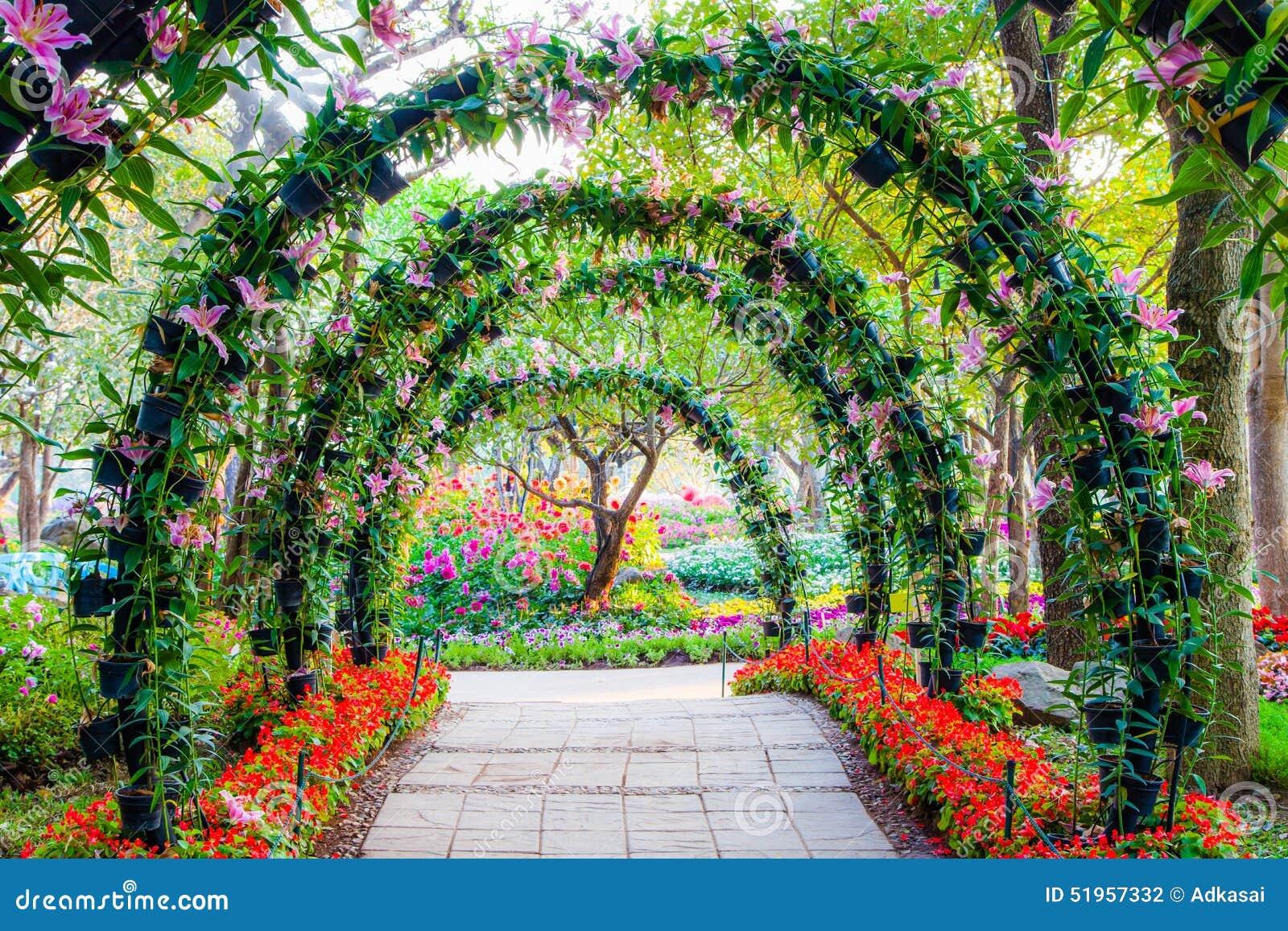 Piękni kwiatów łuki z przejściem w ornamentacyjnych roślinach uprawiają ogródek