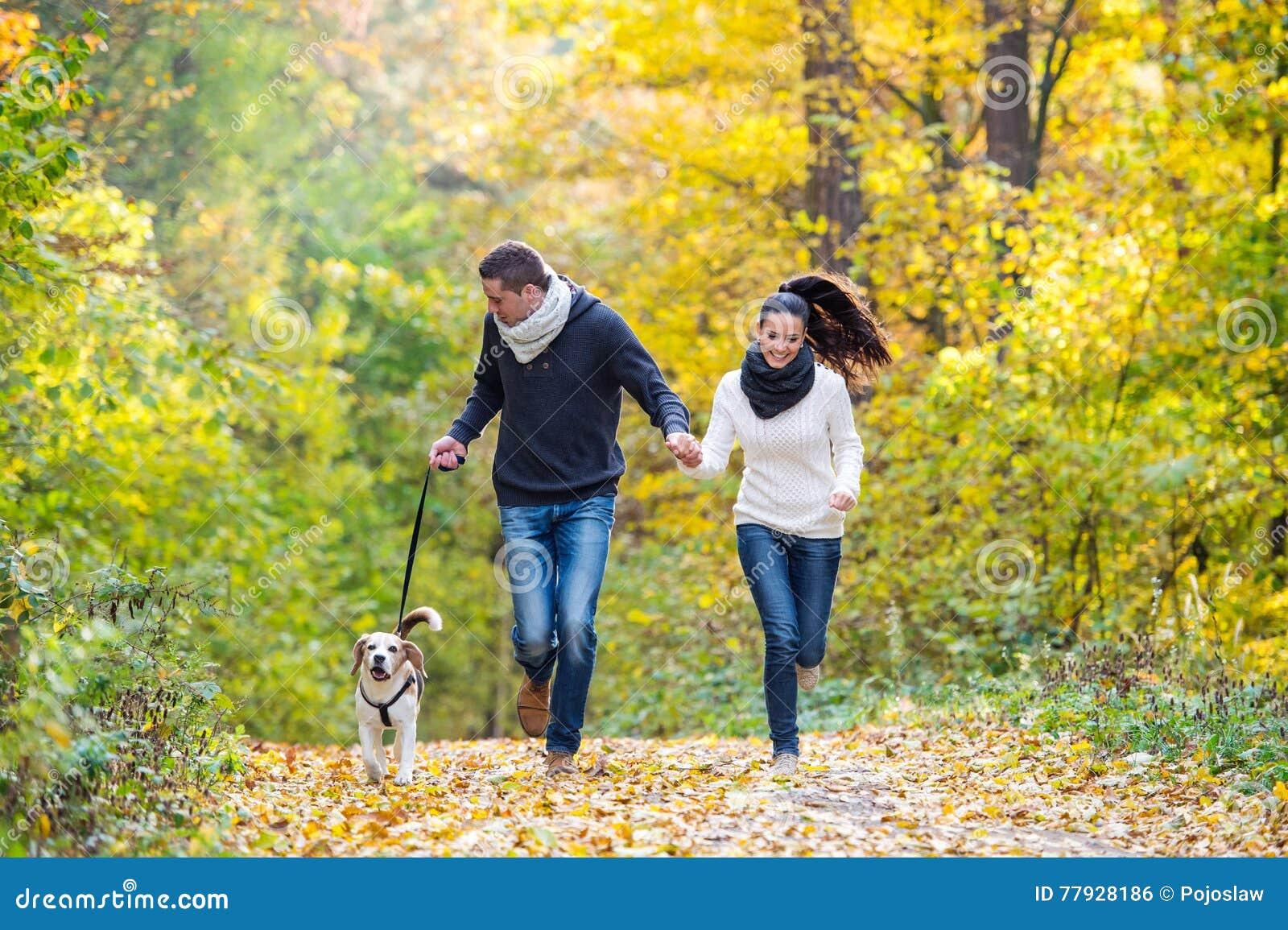 Piękni potomstwa dobierają się z psim bieg w jesień lesie
