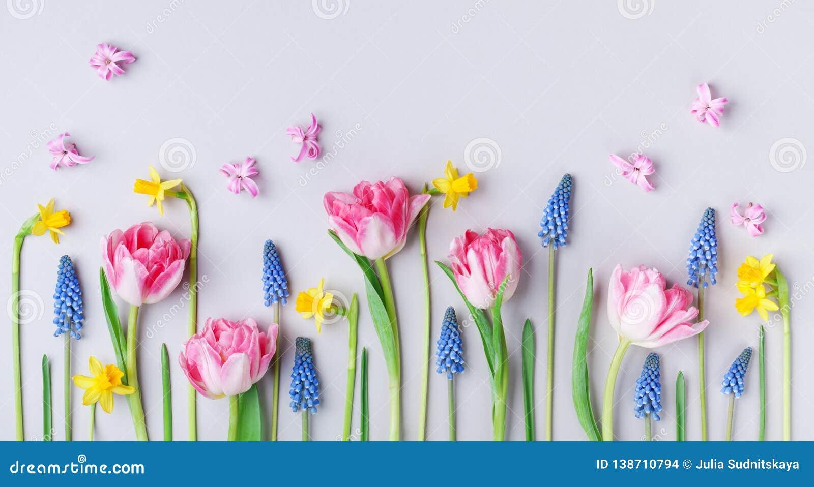 Piękni wiosna kwiaty na pastelu stołu tle Kartka Z Pozdrowieniami dla Międzynarodowego kobieta dnia skład twórczej Mieszkanie nie