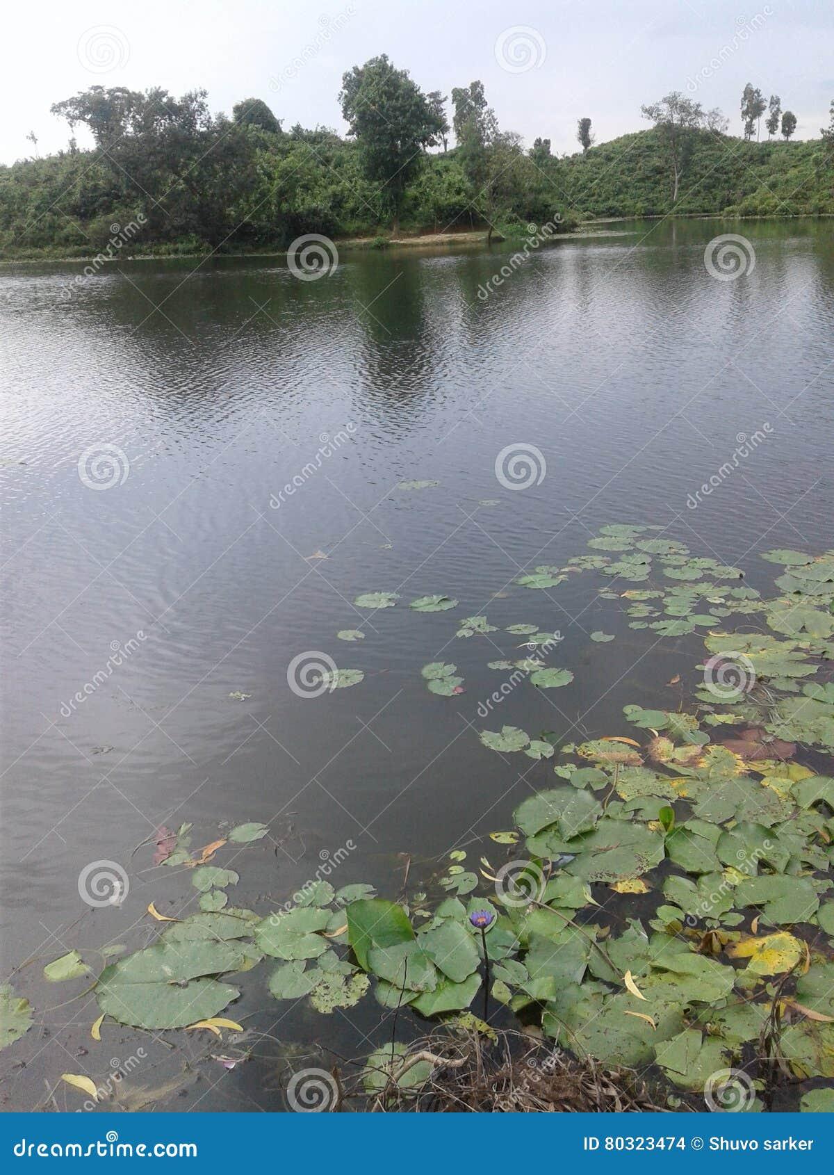 Piękno jezioro