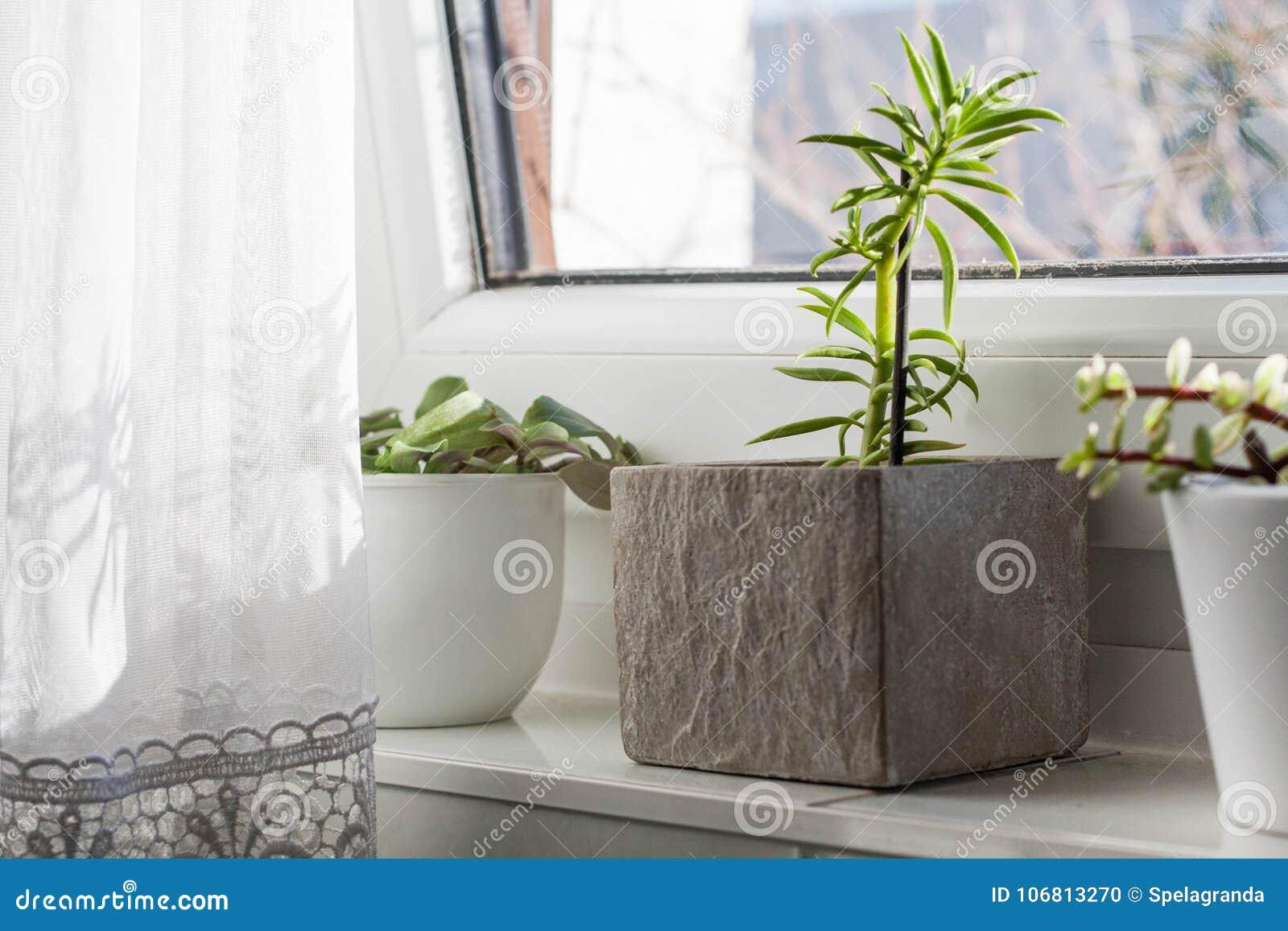 Piękny łazienki Okno Parapet Zdjęcie Stock Obraz Złożonej
