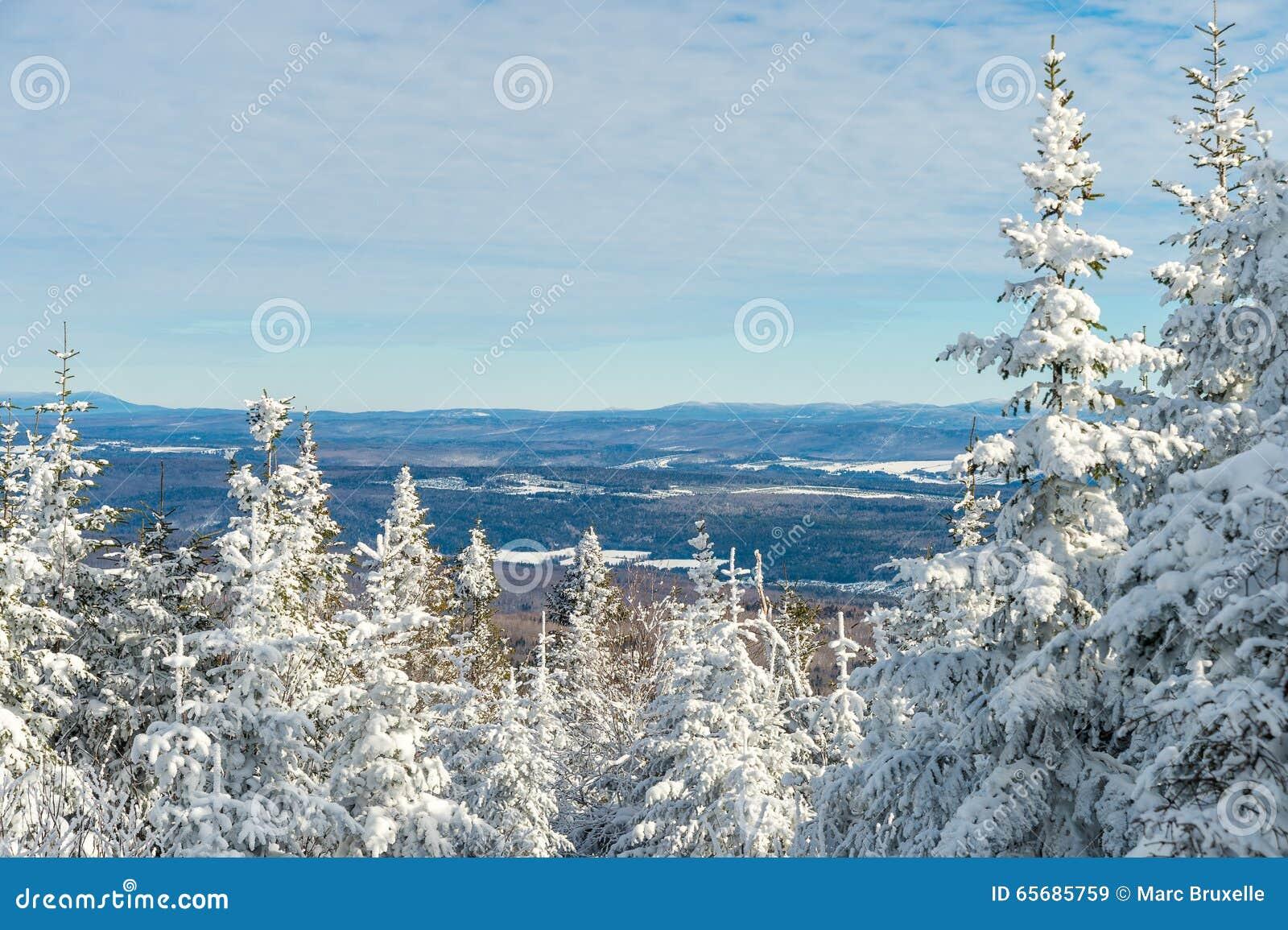 Piękny śnieżny krajobraz w Quebec, Kanada