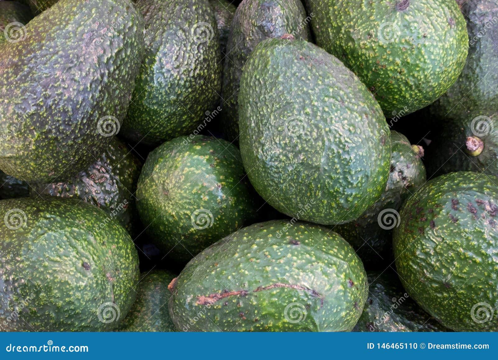 Piękny ciemnozielony avocado zakłada w hali targowej