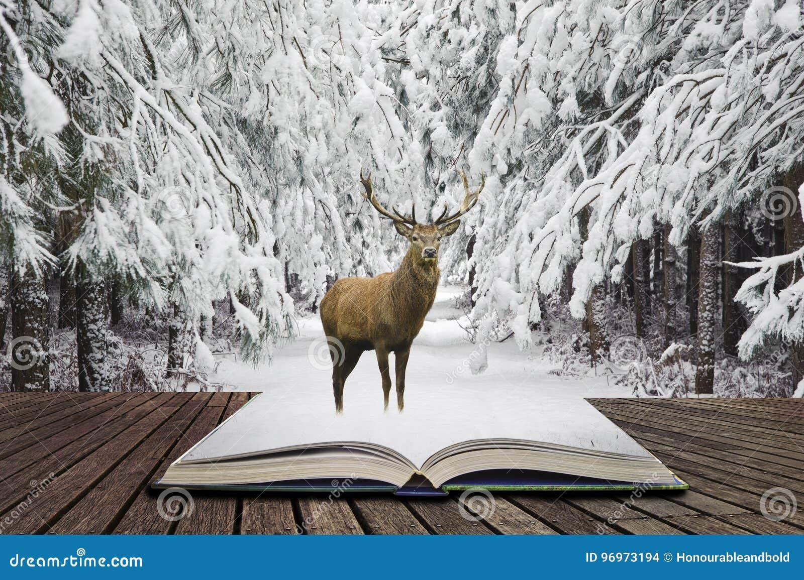 Piękny czerwonego rogacza jeleń w śniegu zakrywał świąteczną sezon zimę fo