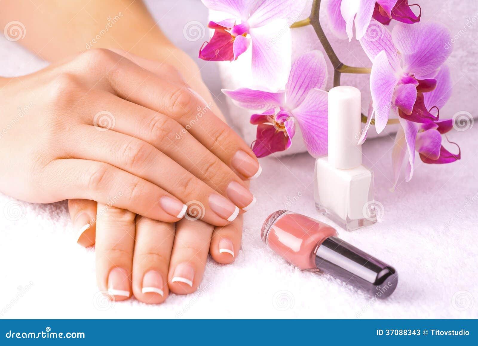 Download Piękny Francuski Manicure Z Różową Orchideą Na Obraz Stock - Obraz złożonej z terry, skóra: 37088343
