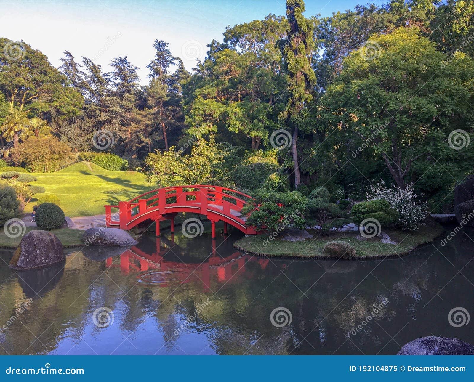 Piękny i wygodny japończyka ogród w Francja