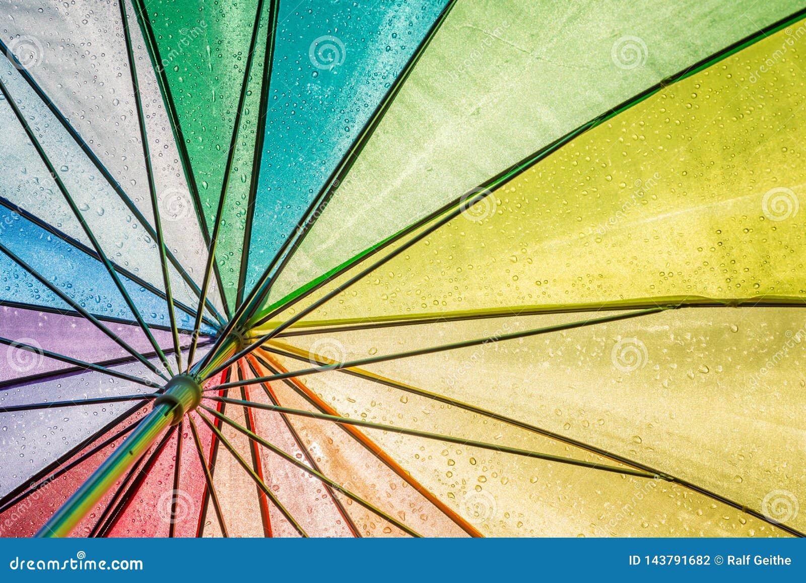 Piękny kolorowy mokry parasol z półprzezroczystym słońcem widzieć spod spodu