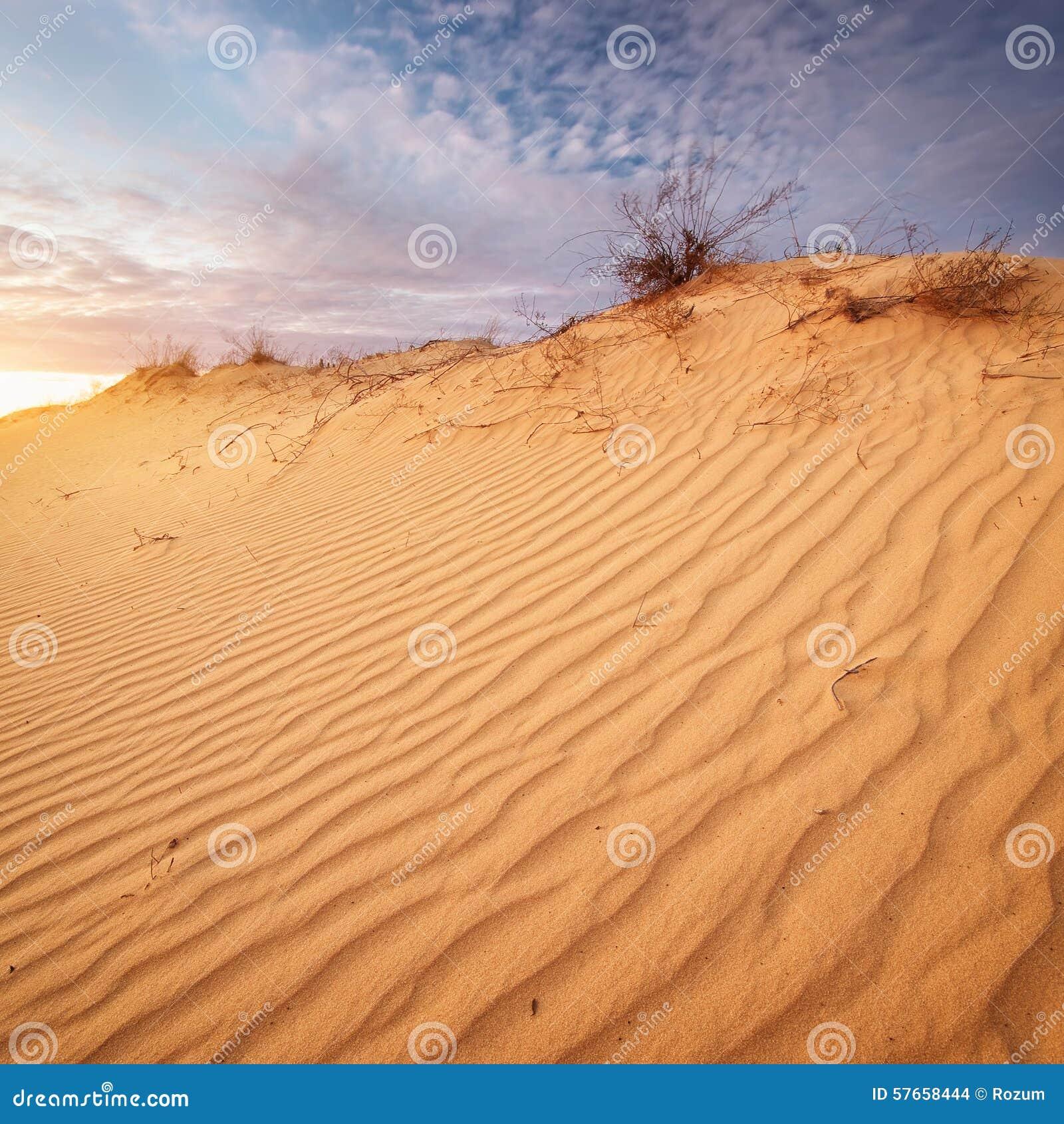 Piękny krajobraz w pustyni