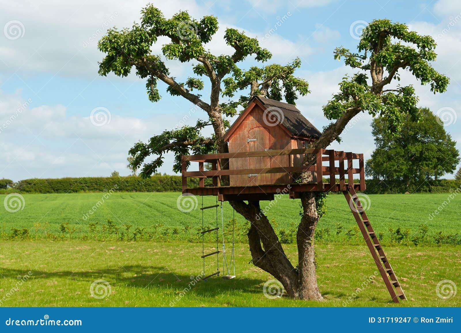 Piękny kreatywnie drzewny dom