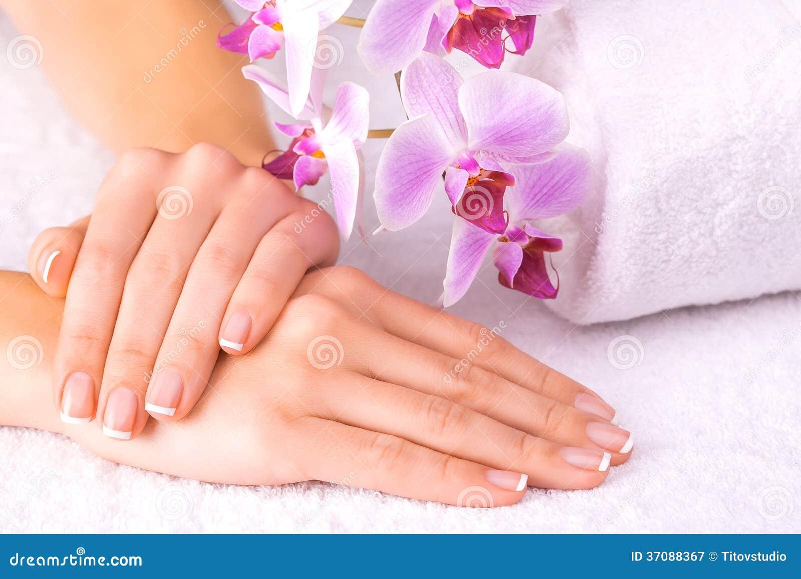 Download Piękny Manicure Z Różową Orchideą Na Bielu Obraz Stock - Obraz złożonej z orchidea, ręcznik: 37088367
