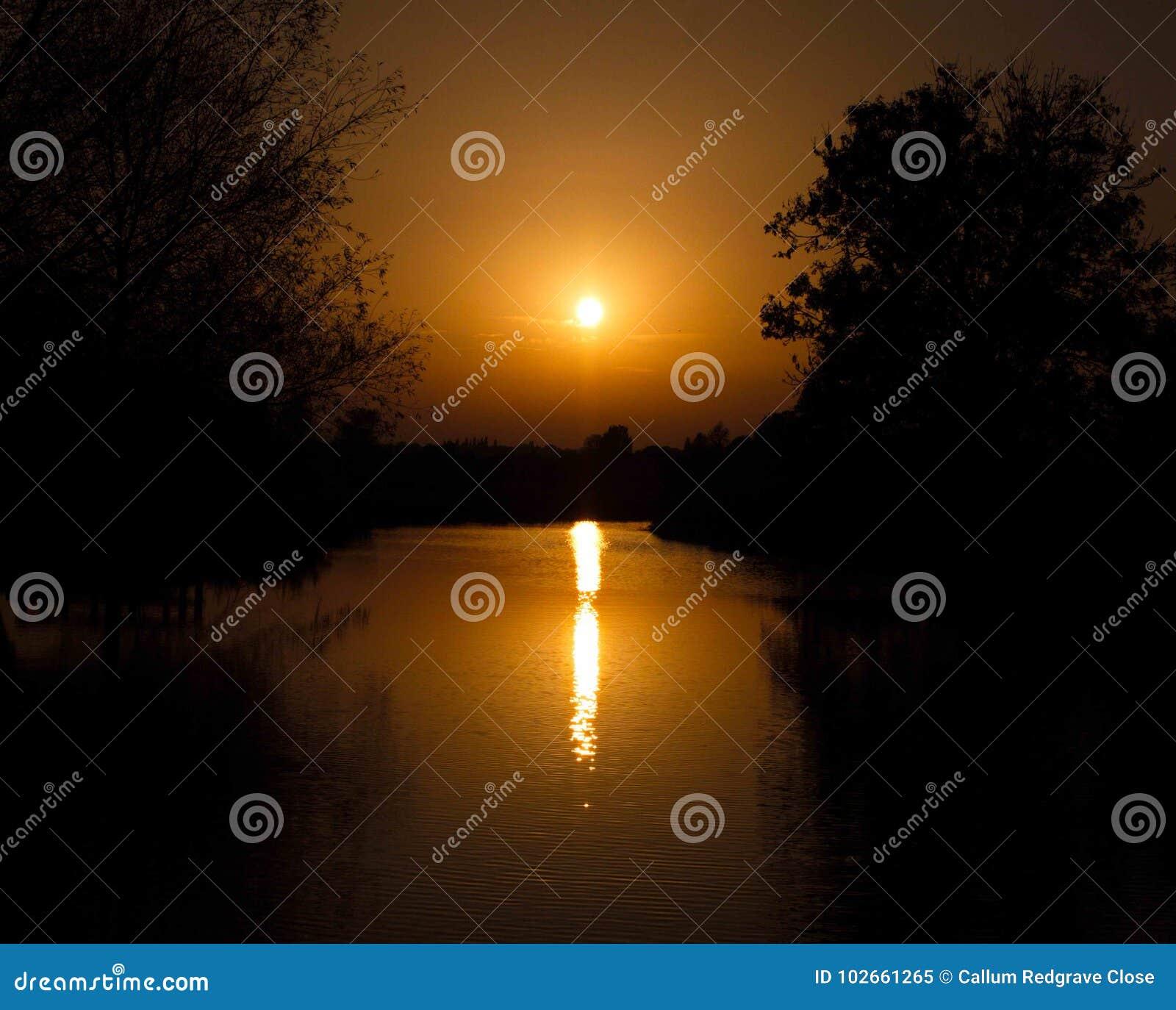 Piękny oszałamiająco rozjarzony zmierzch nad jeziornym nieba i drzewa silhoue