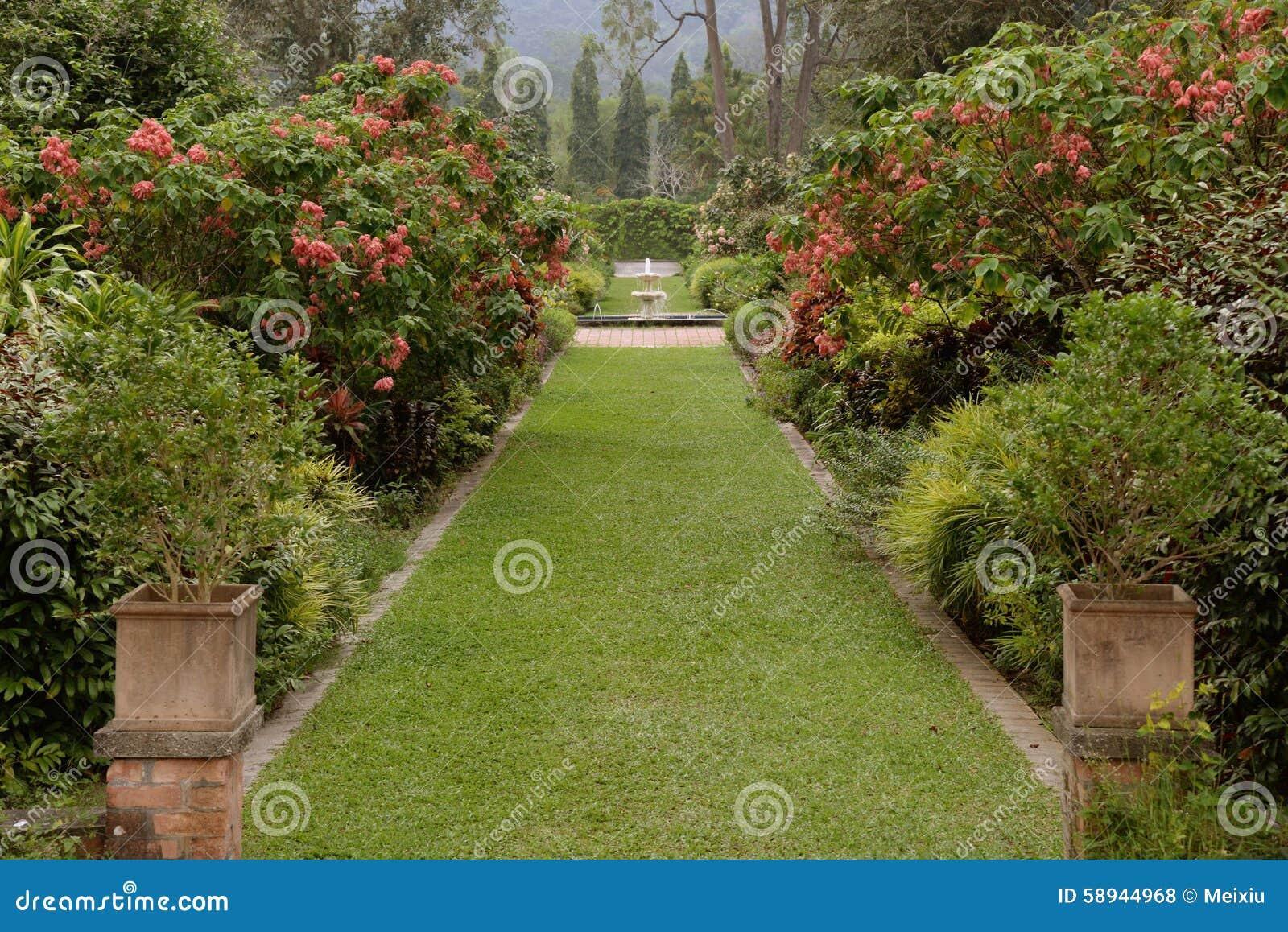 Piękny robiący manikiur gazon w lato ogródzie