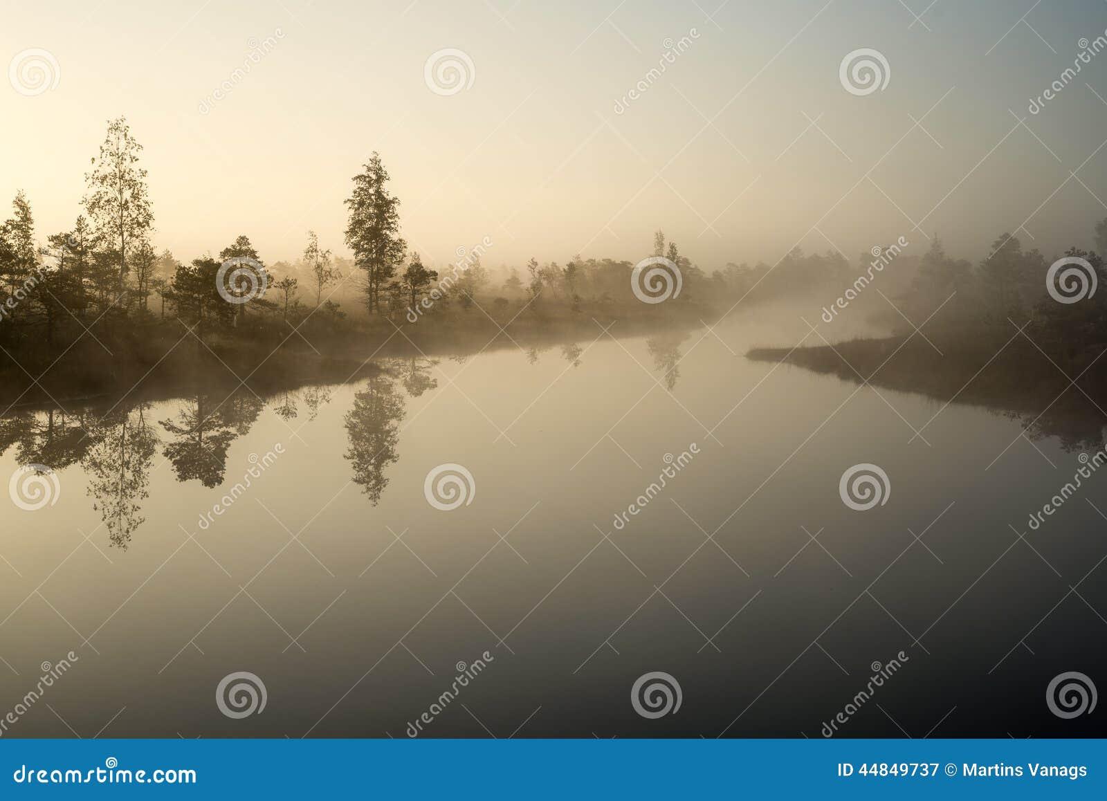 Piękny spokojny krajobraz mglisty bagna jezioro