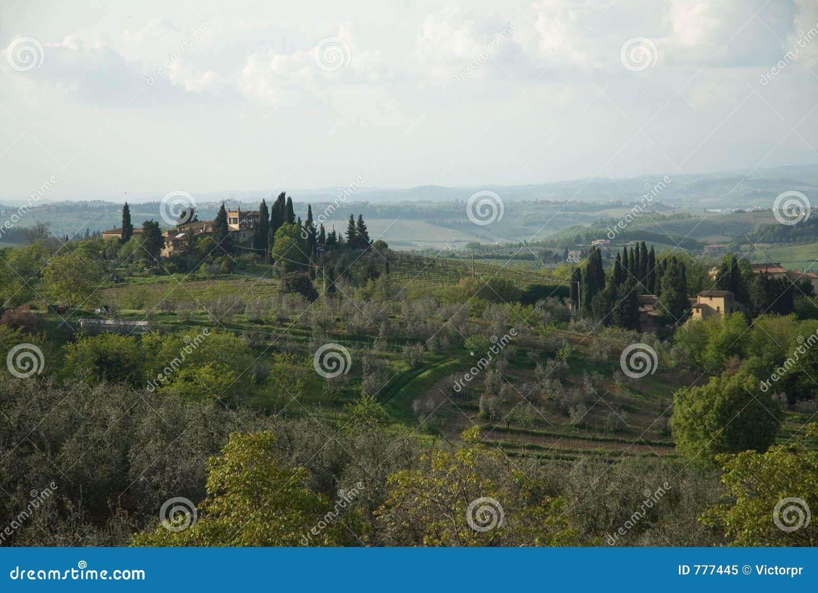 Piękny Toskanii
