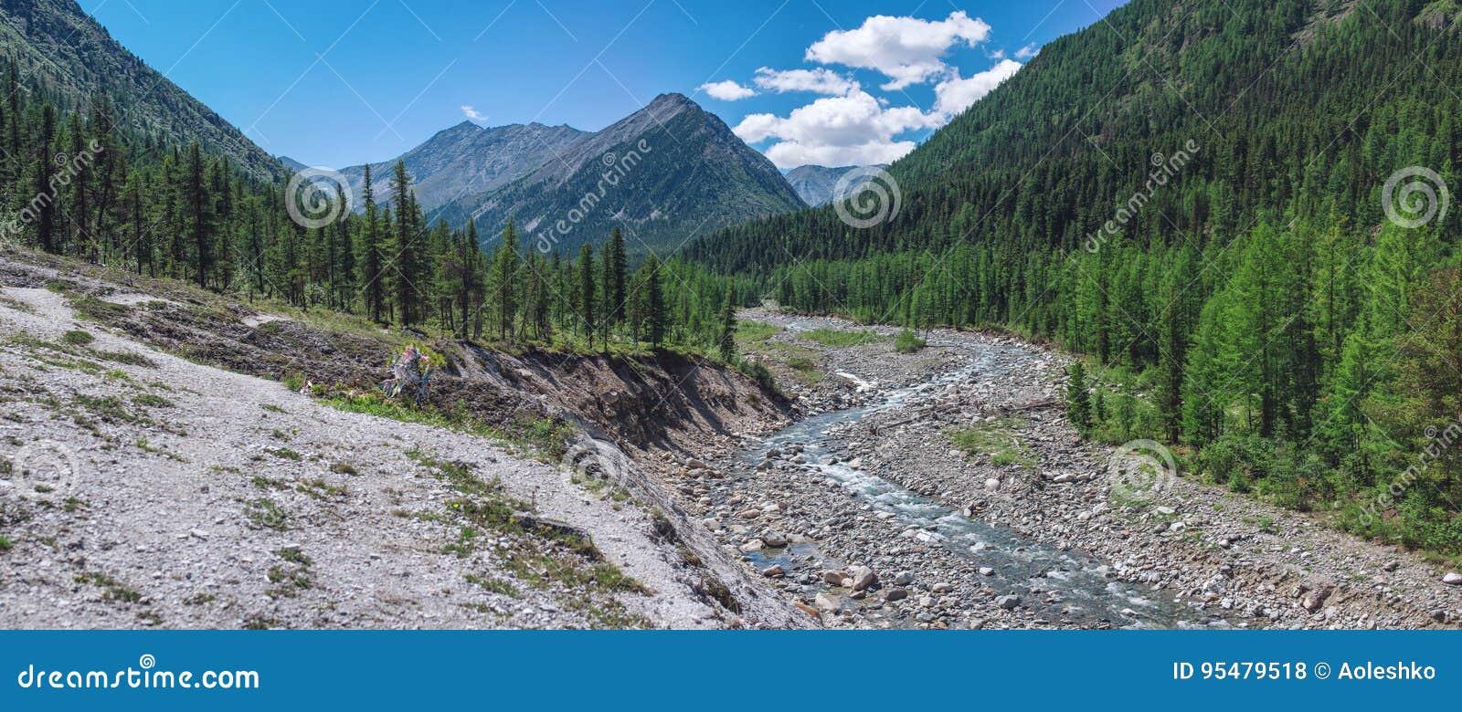 Piękny widok halna rzeka wśród lasu i skały na tle osiąga szczyt