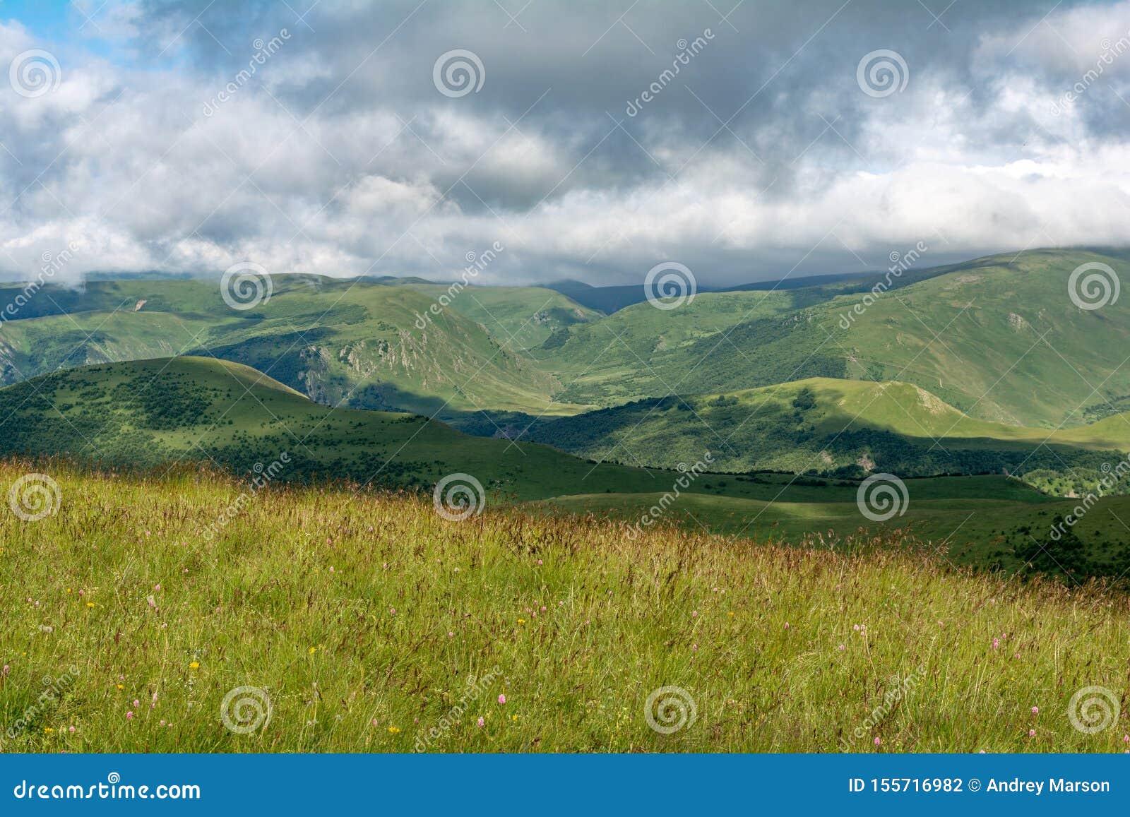 Piękny widok idylliczna wysokogórska halna sceneria z kwitnącymi łąkami i górami na pięknym słonecznym dniu z niebieskim niebem i