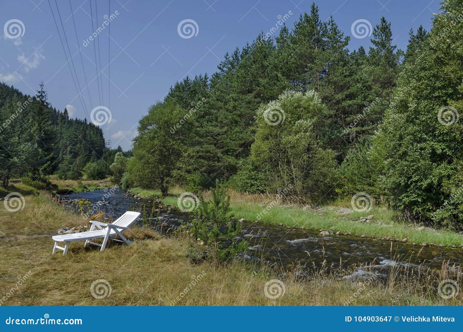 Piękny widok jesienny las Iskar w Rila górze i rzeka