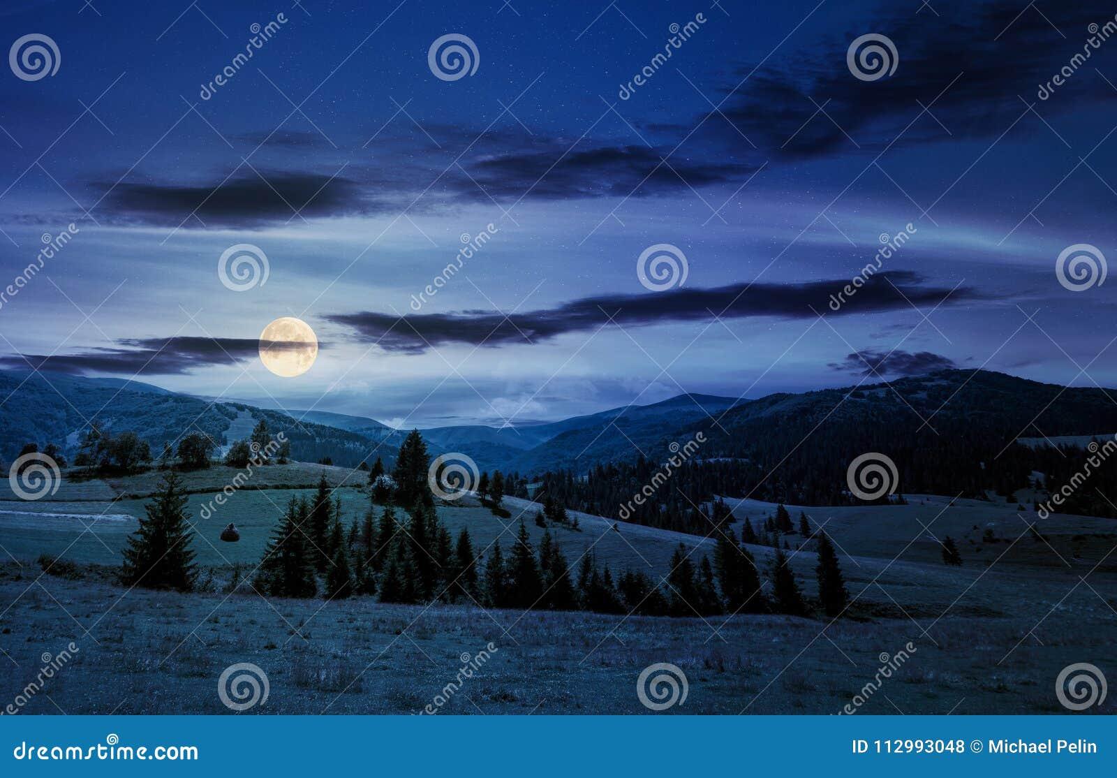 Piękny wsi lata krajobraz przy nocą