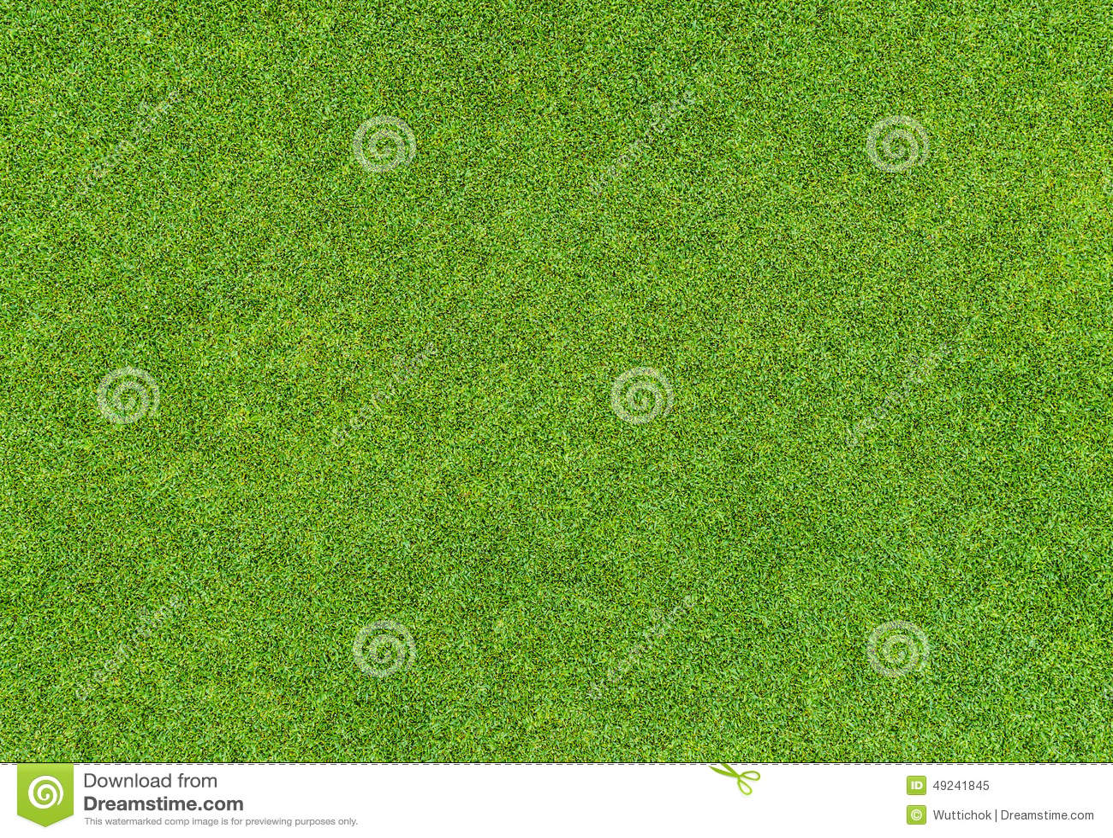 Piękny zielonej trawy wzór od pola golfowego