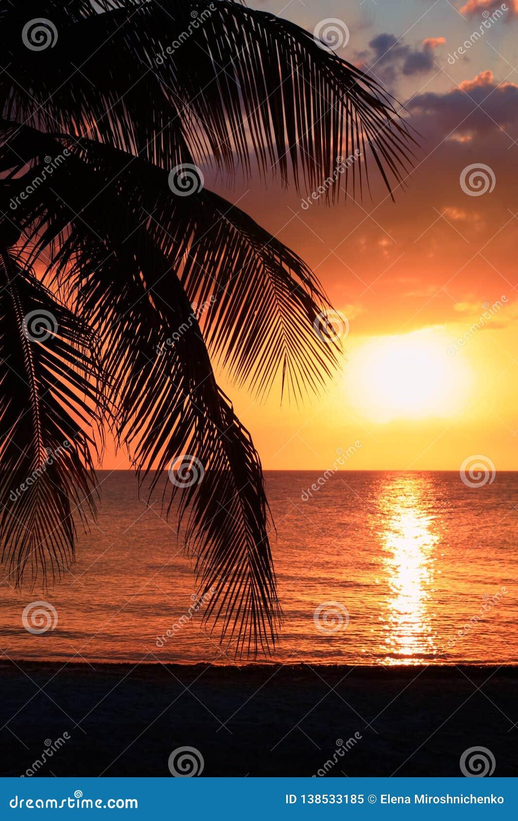 Piękny zmierzch na plaży, słońce iść puszek morze, kobiety sylwetka na bayshore Spokojny nastrojowy, spoczynkowy i relaks conce,