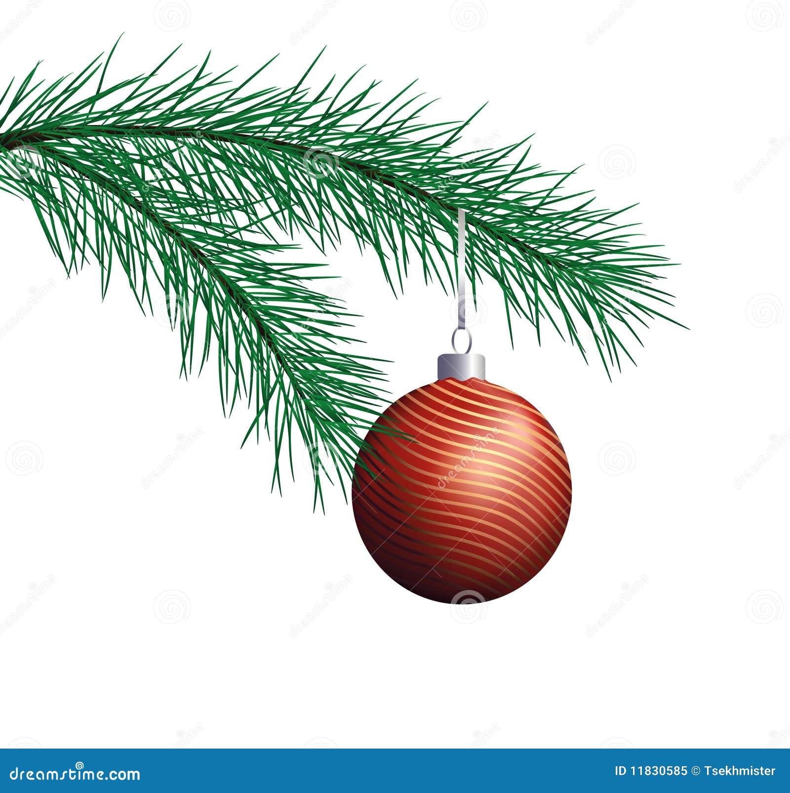 Piłki gałęziasta bożych narodzeń sosny czerwień