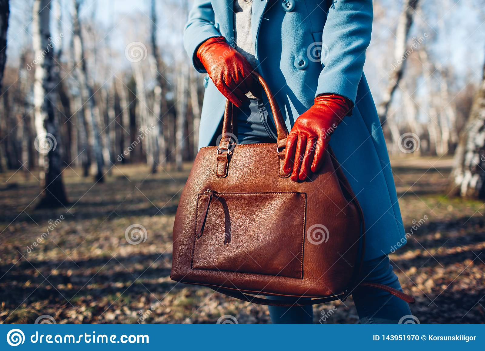 Pi?kno i moda Elegancka modna kobieta jest ubranym jaskraw? smokingow? mienia br?zu torby torebk?