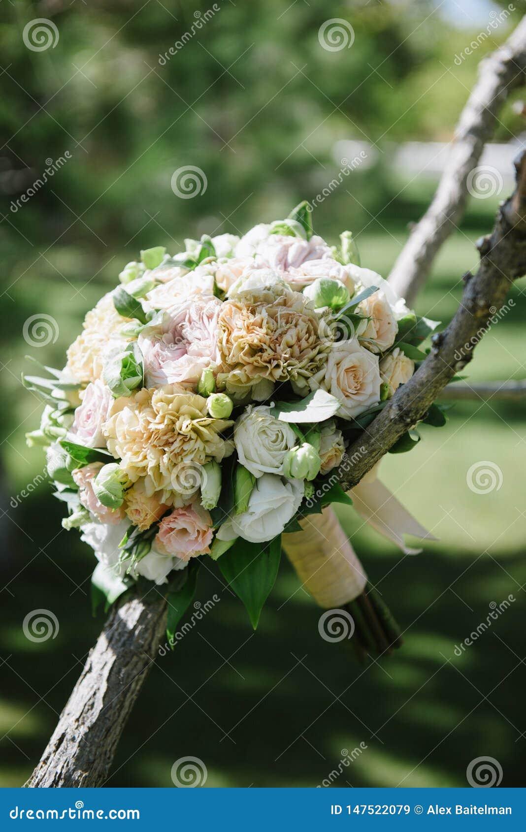 Pi?kny ?lubny bukiet biali kwiaty wiesza na drzewie