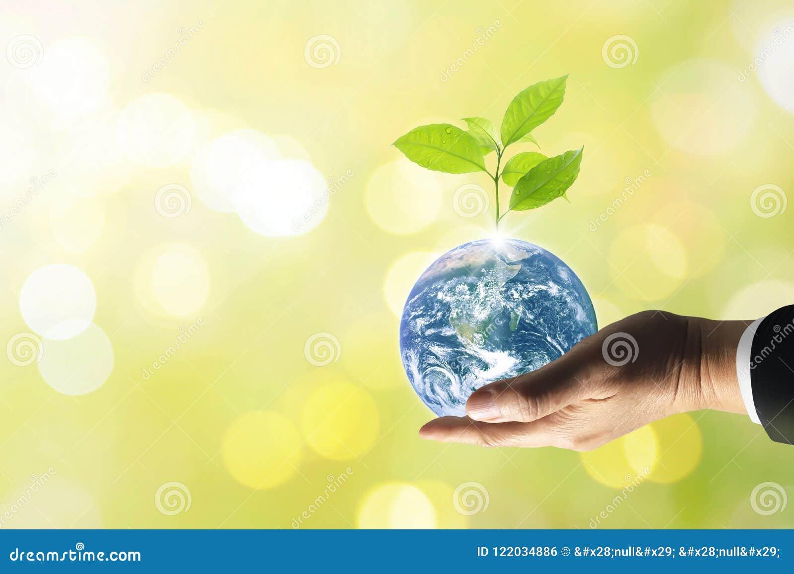 Pianeta Terra con il bello albero di crescita di freschezza
