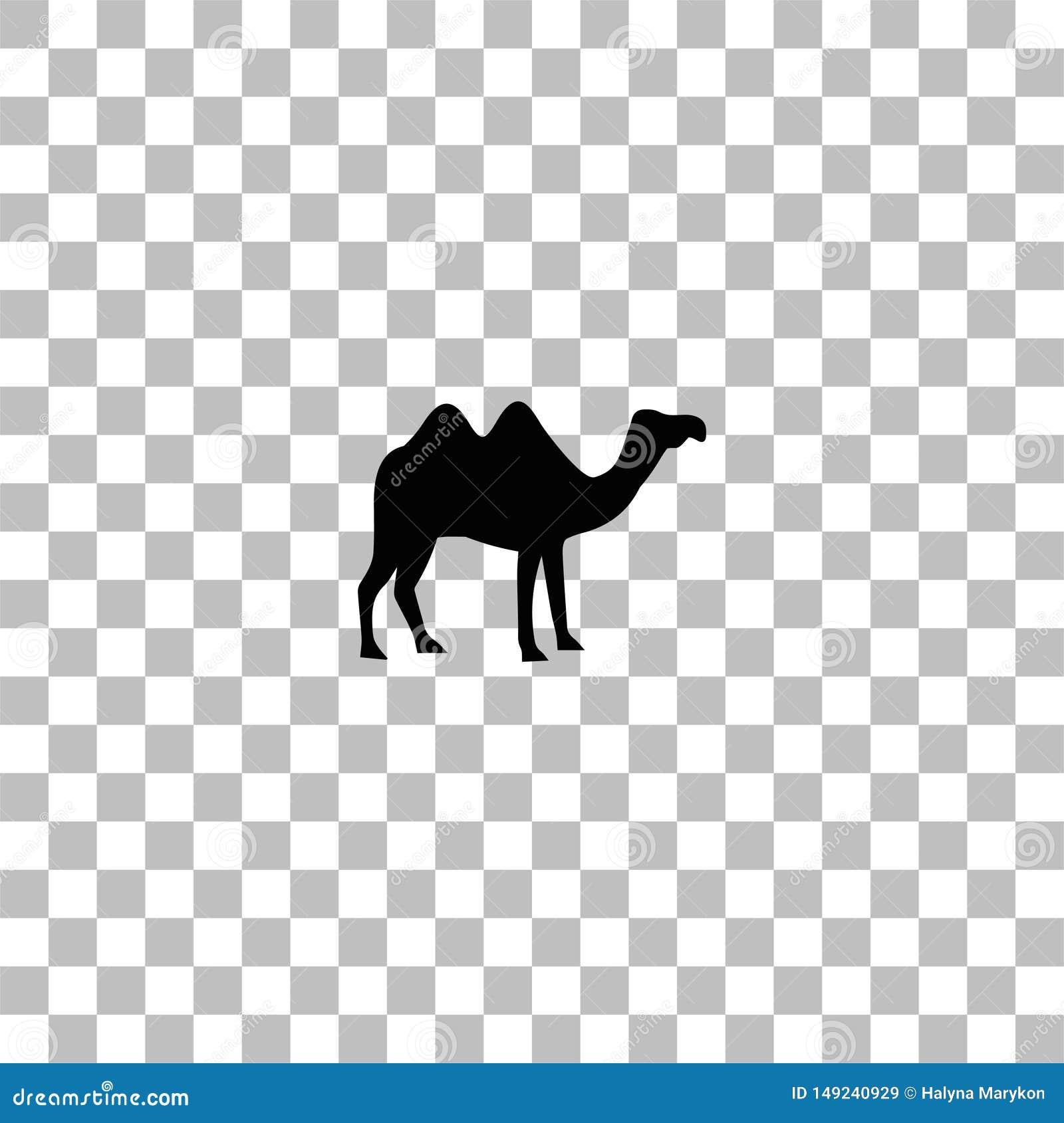 Piano dell icona del cammello