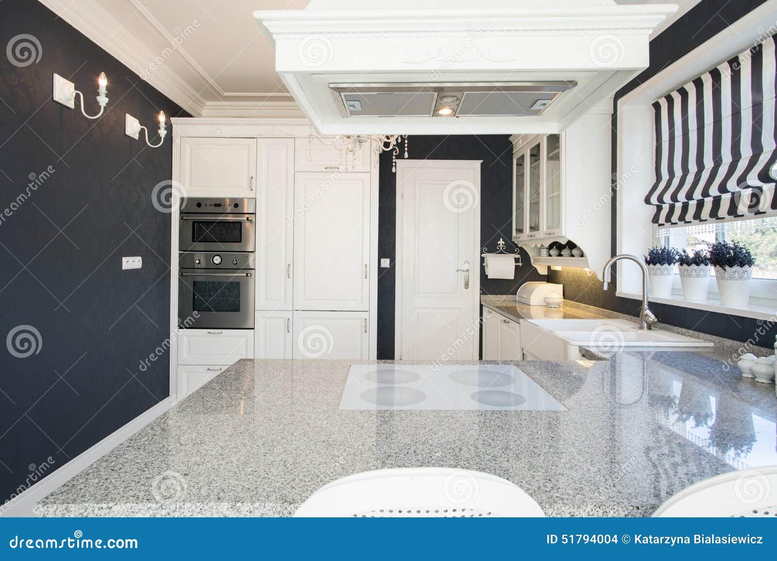 Piano Di Lavoro Di Marmo In Cucina Costosa Fotografia Stock ...