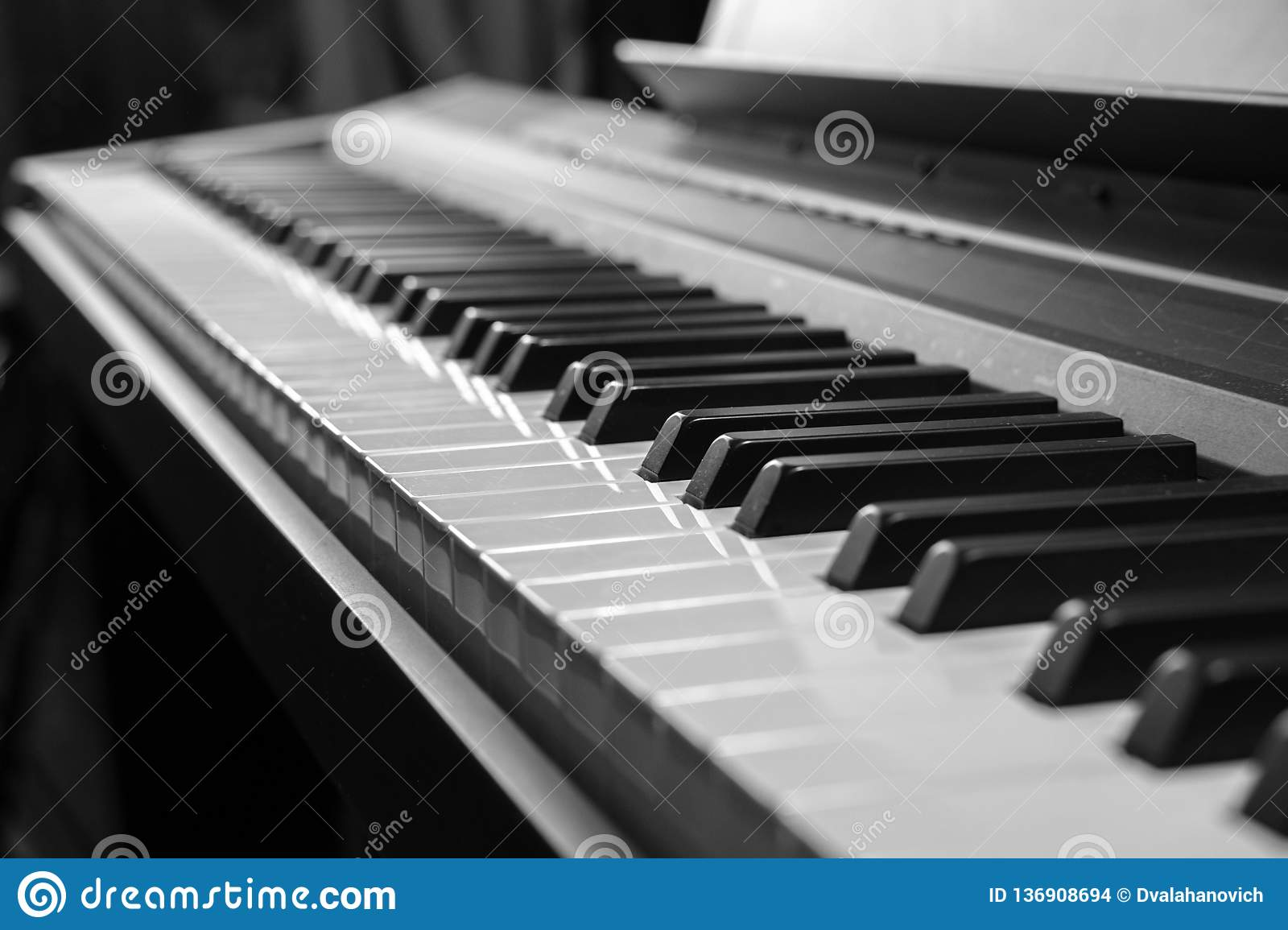 Piano keys black and white photo