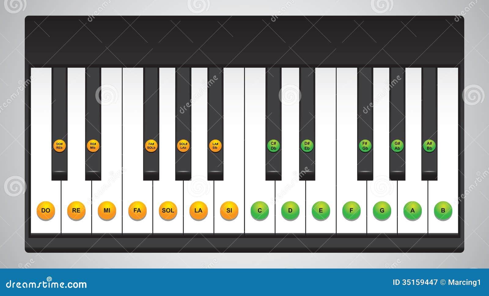 Piano Keys Chart Stock Vector Illustration Of Keys Symbol 35159447
