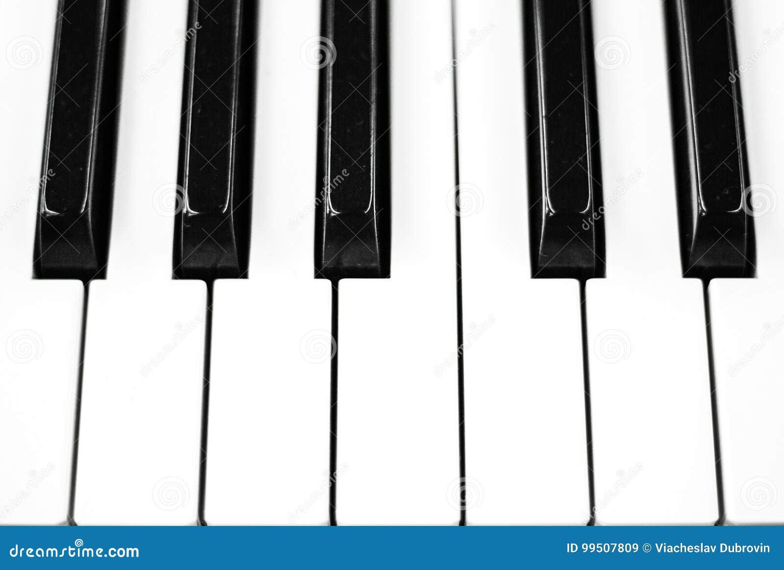 Piano Keys Closeup Photo Black And White Keyboard Of Musical Instrument