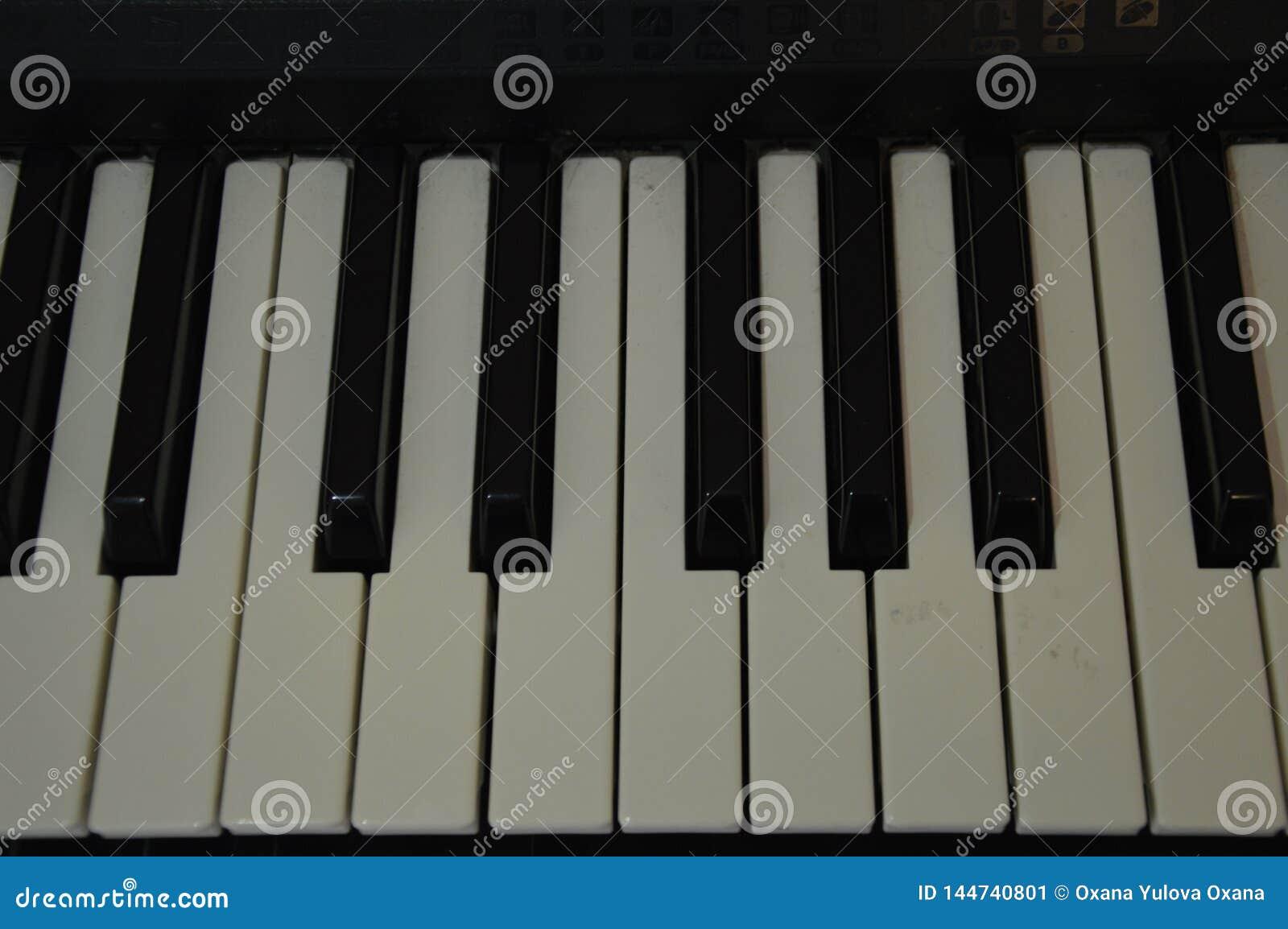 Piano keys stock image  Image of piano, instrument, keys