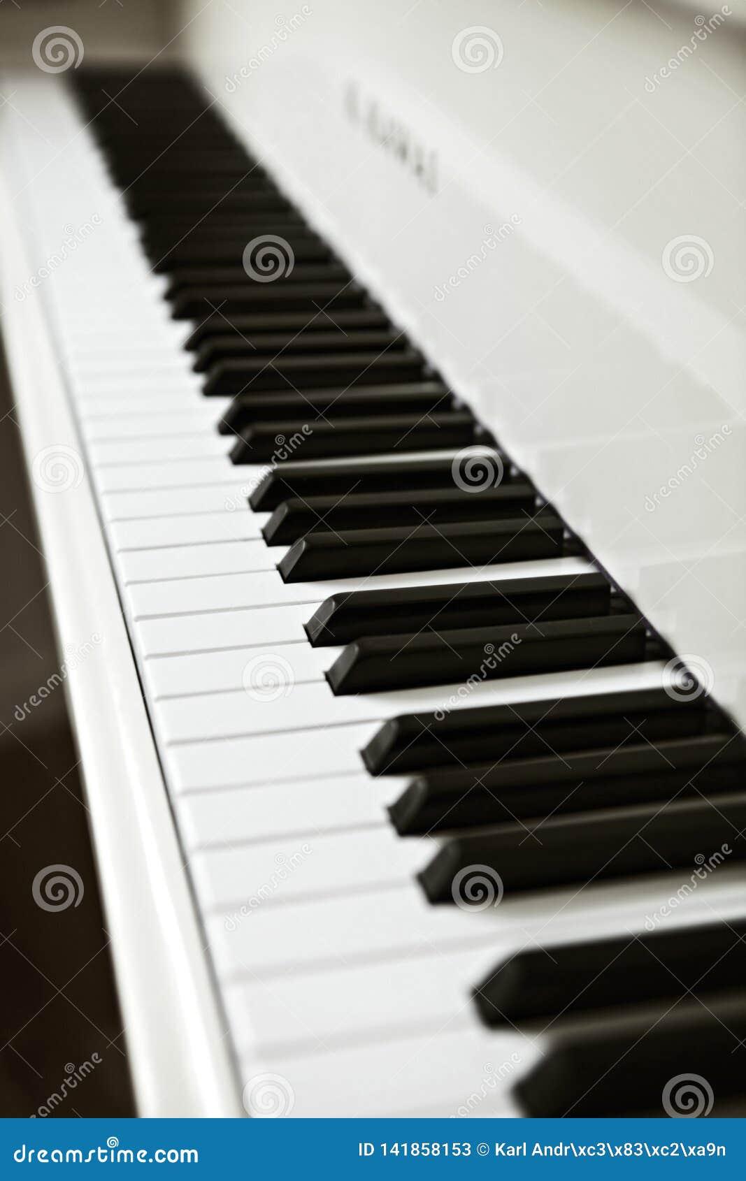 Pianokeys blanco y negro