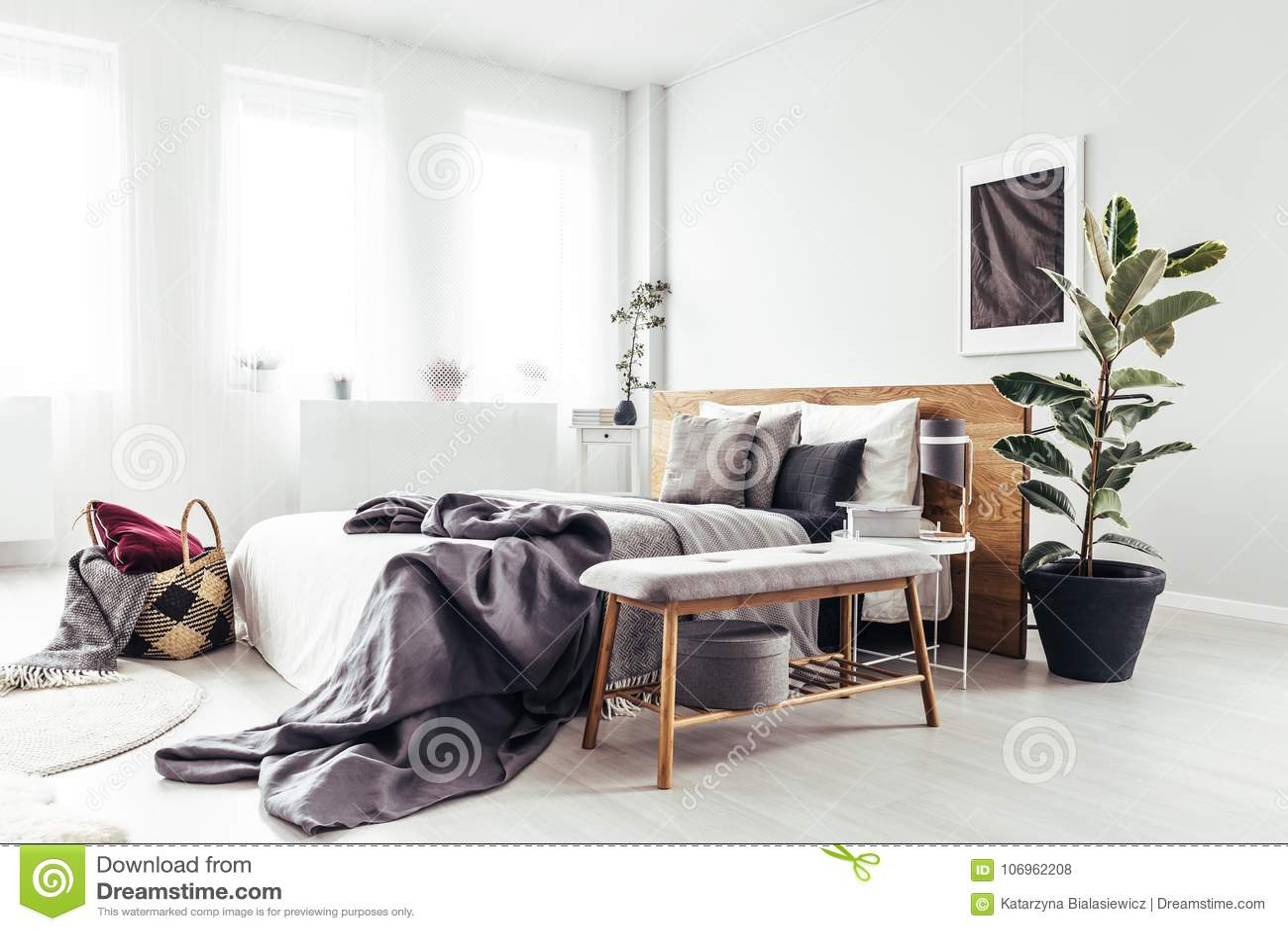 Pianta in camera da letto luminosa fotografia stock immagine di