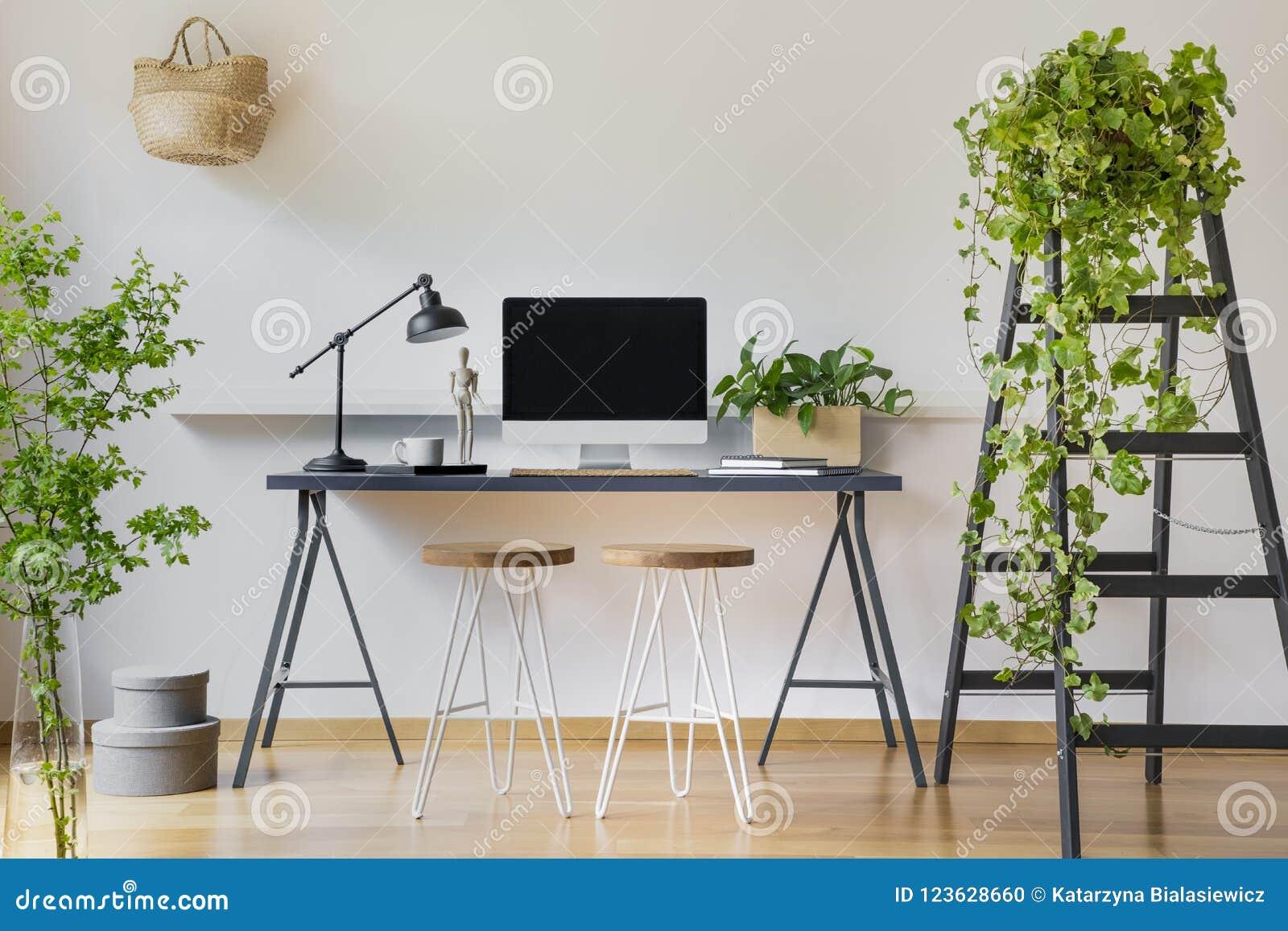 Edera Pianta Da Interno pianta dell'edera su una scala di legno in un interno